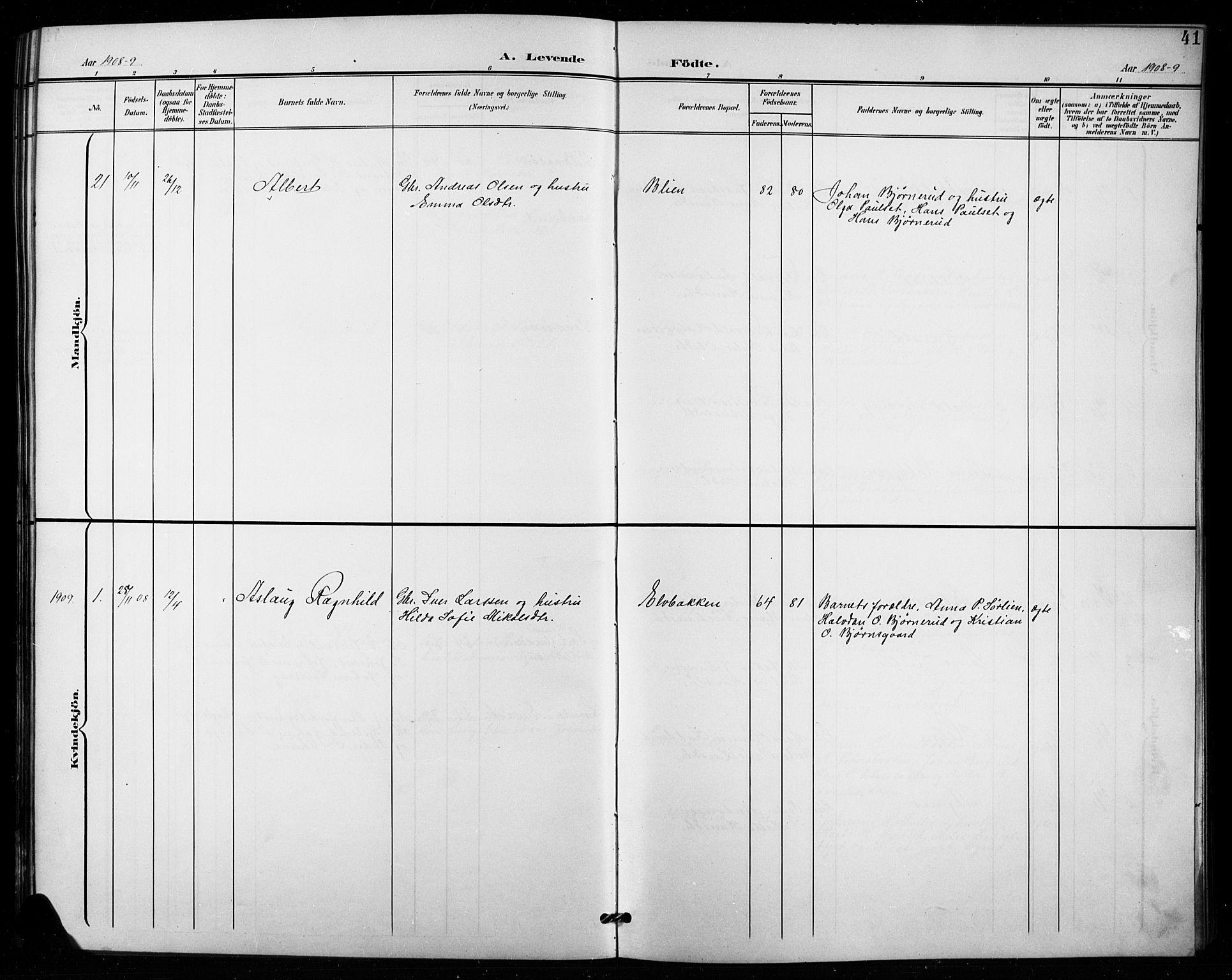 SAH, Vestre Toten prestekontor, H/Ha/Hab/L0016: Klokkerbok nr. 16, 1901-1915, s. 41