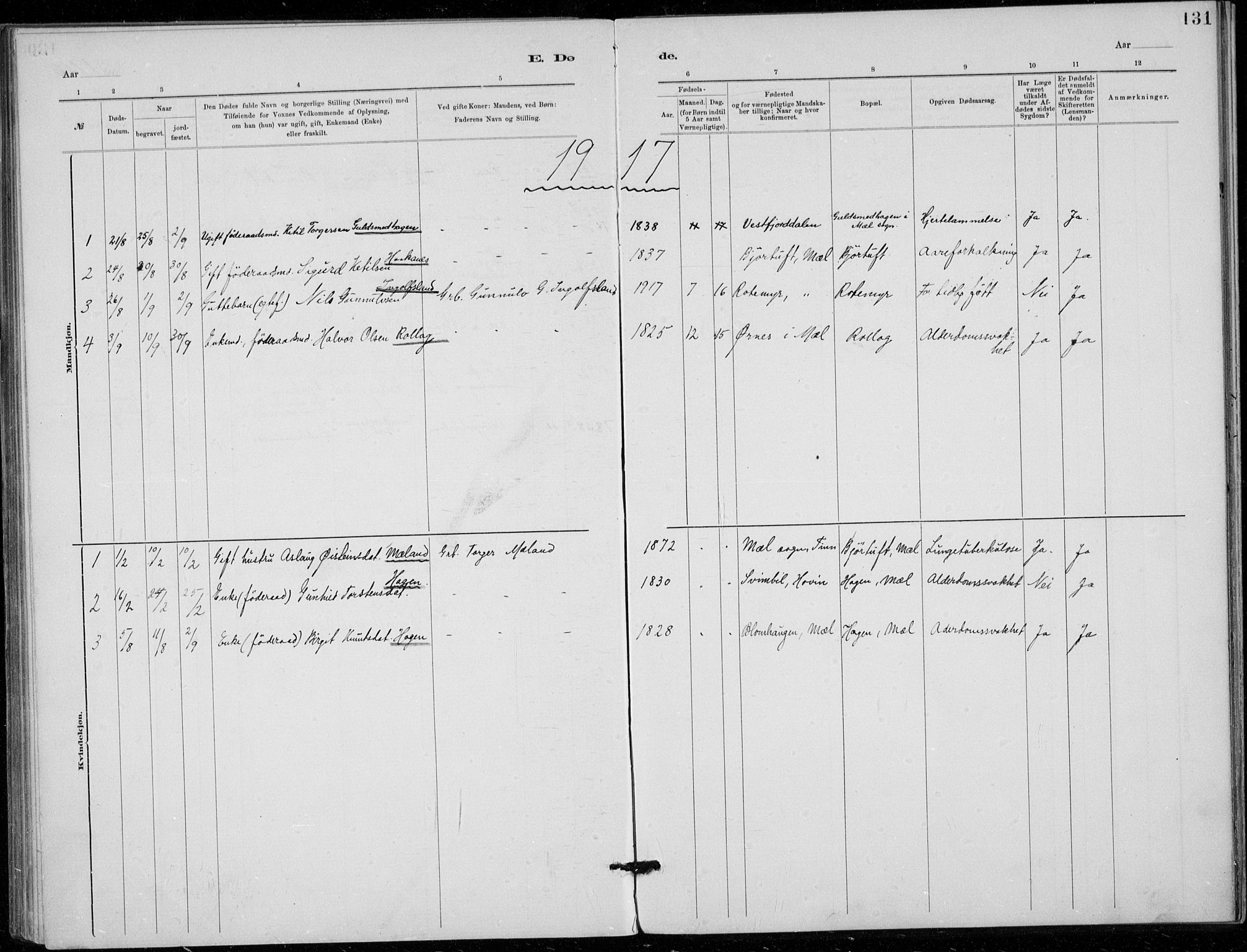 SAKO, Tinn kirkebøker, F/Fb/L0002: Ministerialbok nr. II 2, 1878-1917, s. 131