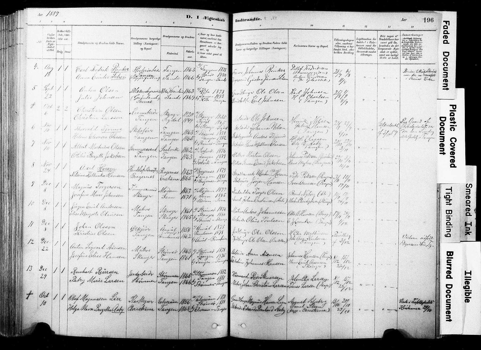 SAKO, Strømsø kirkebøker, F/Fb/L0006: Ministerialbok nr. II 6, 1879-1910, s. 196