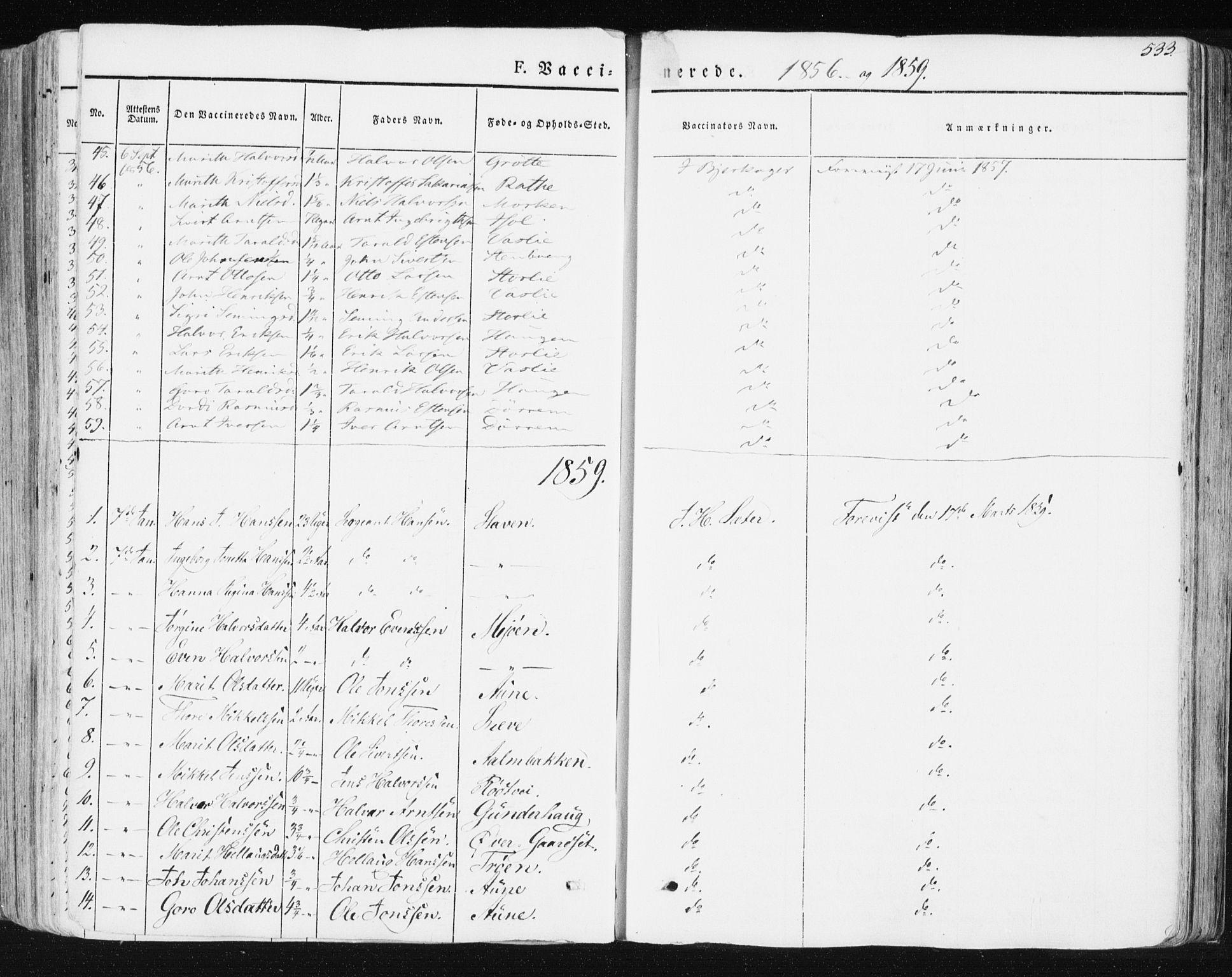 SAT, Ministerialprotokoller, klokkerbøker og fødselsregistre - Sør-Trøndelag, 678/L0899: Ministerialbok nr. 678A08, 1848-1872, s. 533