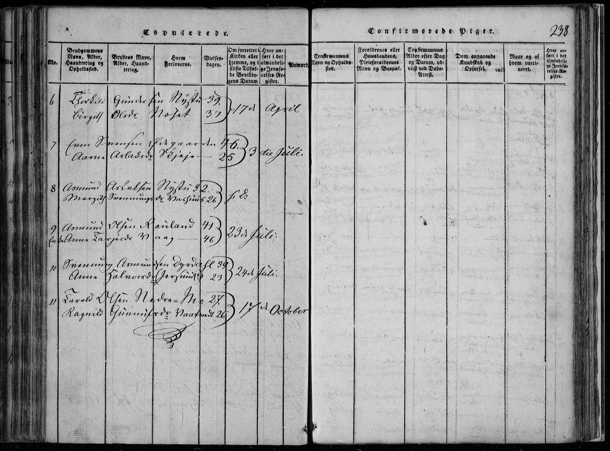 SAKO, Rauland kirkebøker, F/Fa/L0001: Ministerialbok nr. 1, 1814-1859, s. 238