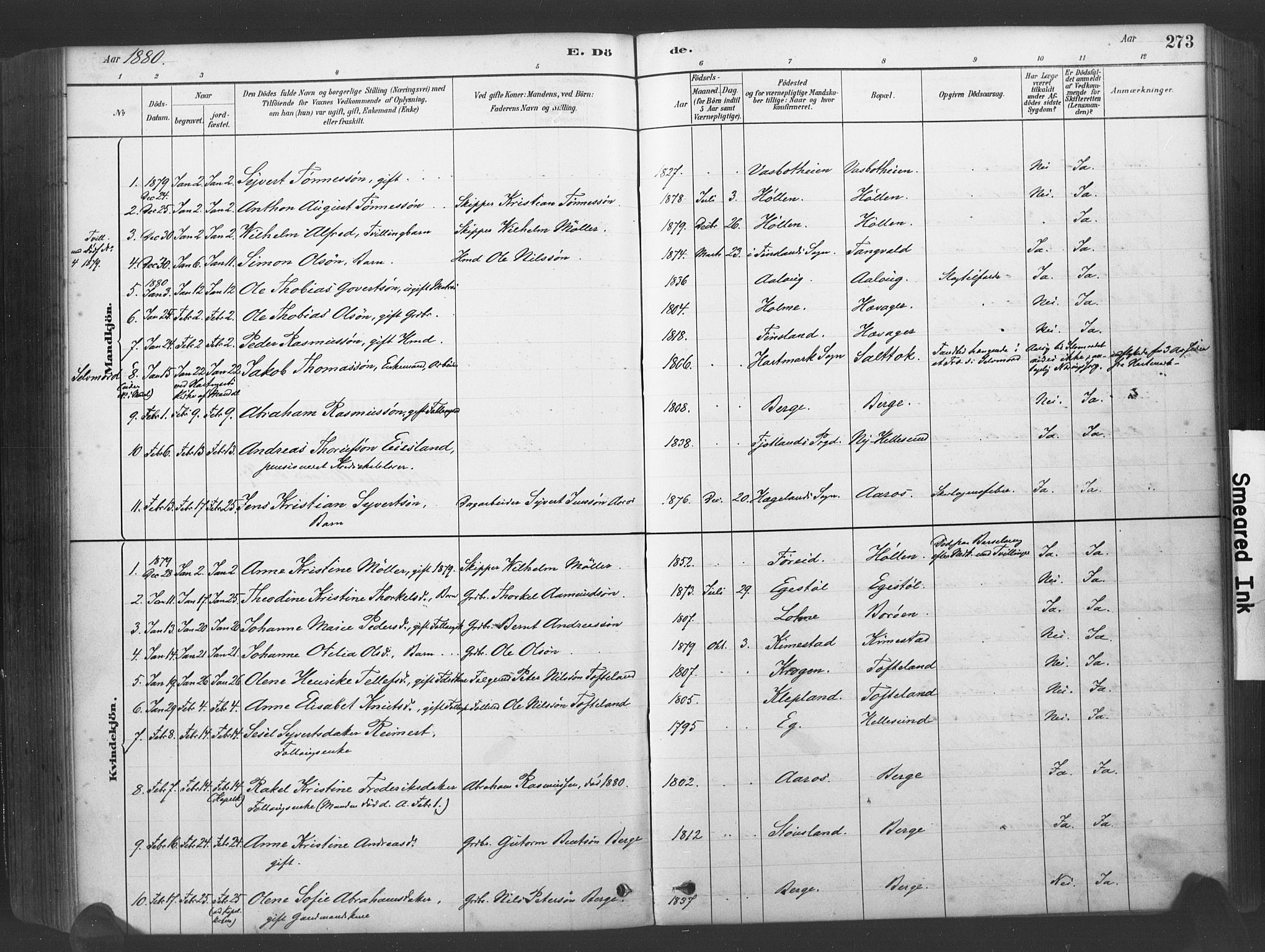 SAK, Søgne sokneprestkontor, F/Fa/Fab/L0012: Ministerialbok nr. A 12, 1880-1891, s. 273