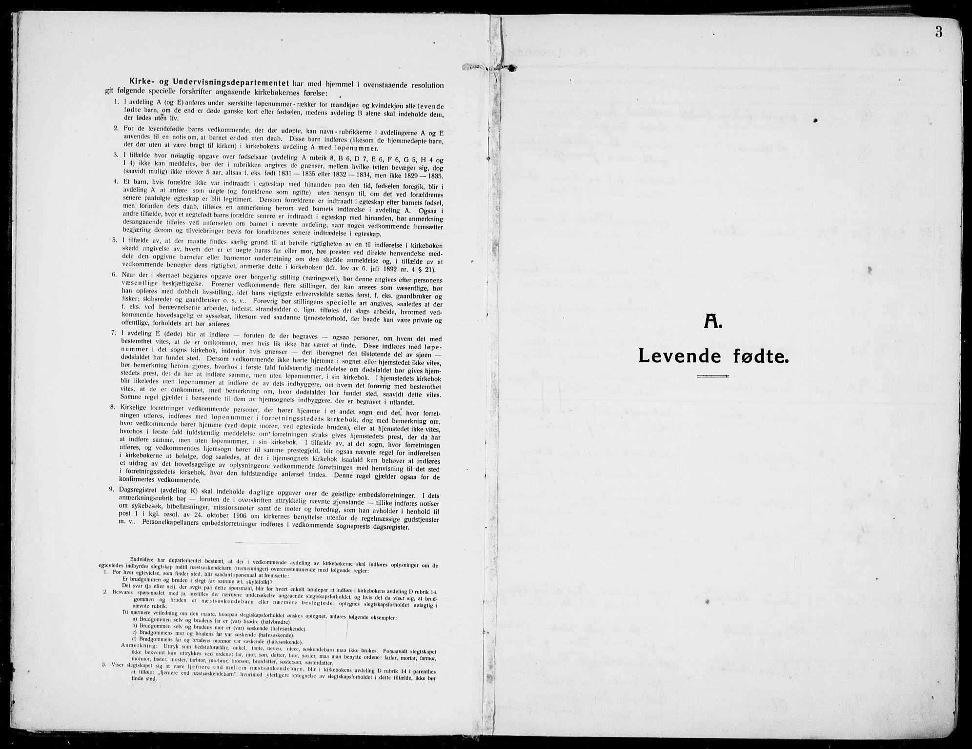 SAKO, Rjukan kirkebøker, F/Fa/L0002: Ministerialbok nr. 2, 1912-1917, s. 3