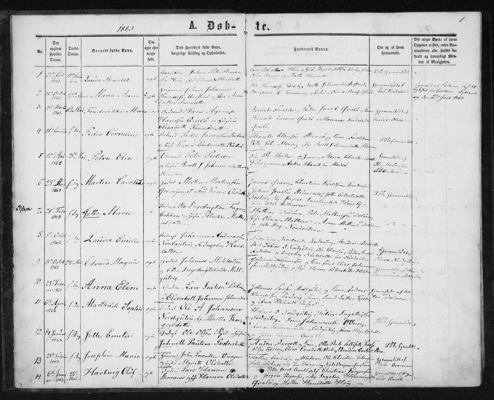 SAT, Ministerialprotokoller, klokkerbøker og fødselsregistre - Nord-Trøndelag, 788/L0696: Ministerialbok nr. 788A03, 1863-1877, s. 1