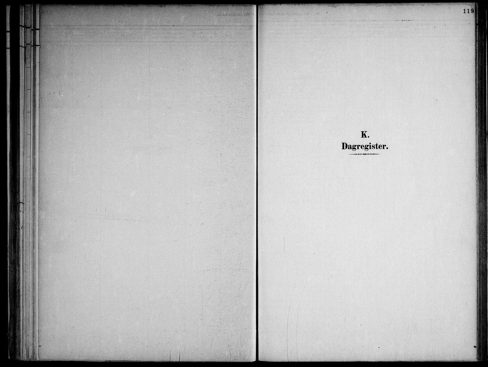 SAKO, Lårdal kirkebøker, F/Fa/L0007: Ministerialbok nr. I 7, 1887-1906, s. 119