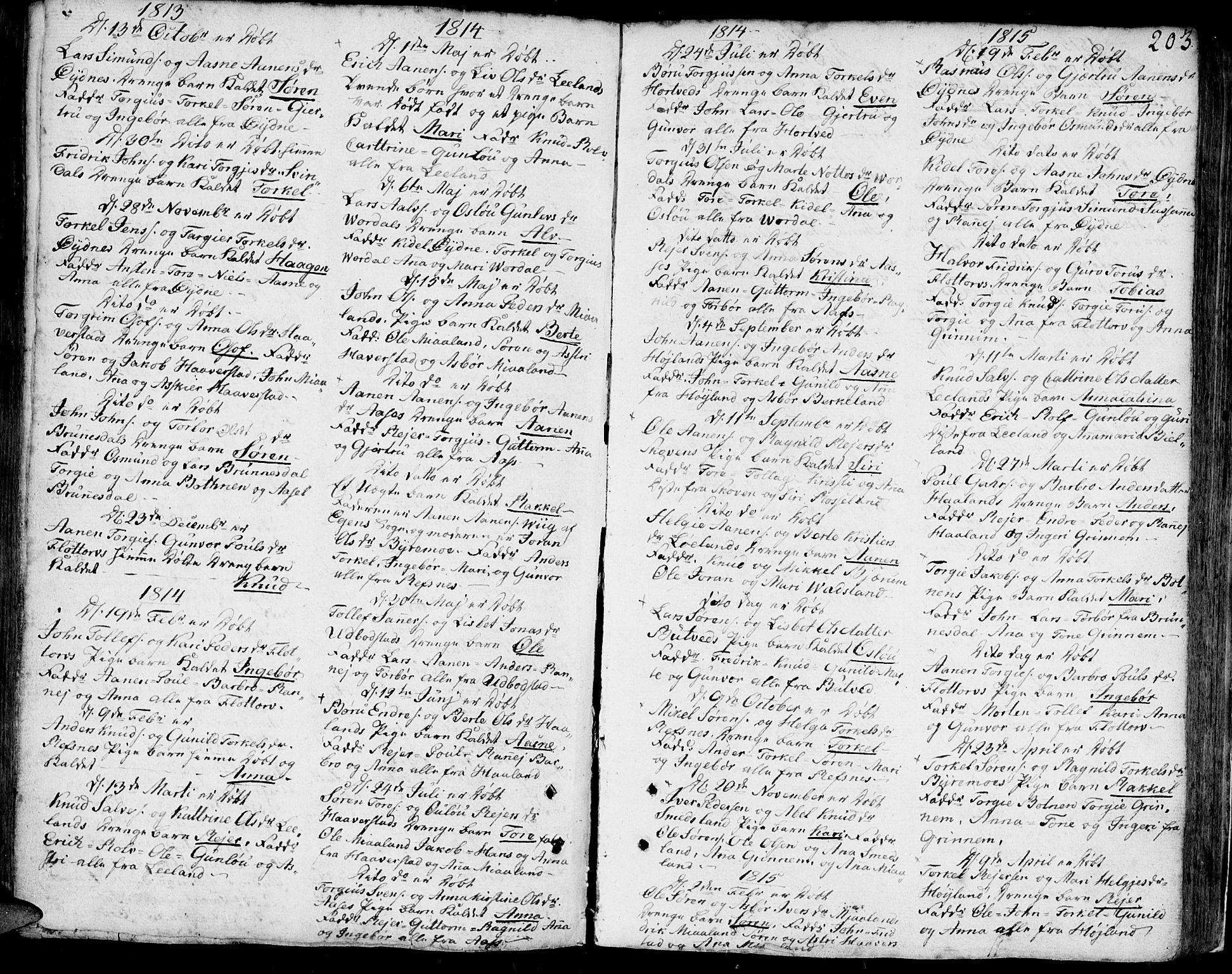 SAK, Bjelland sokneprestkontor, F/Fa/Faa/L0001: Ministerialbok nr. A 1 /3, 1793-1815, s. 203