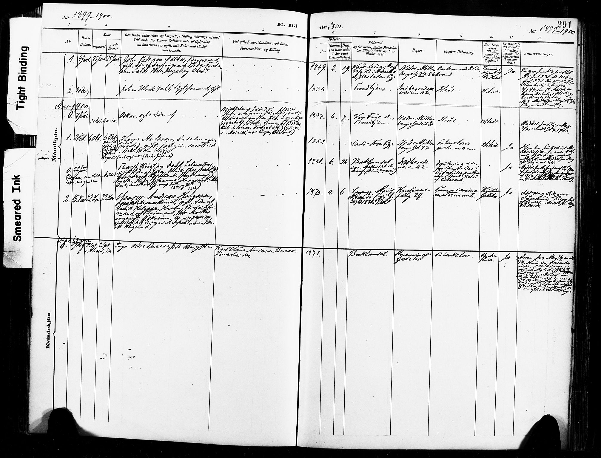 SAT, Ministerialprotokoller, klokkerbøker og fødselsregistre - Sør-Trøndelag, 604/L0198: Ministerialbok nr. 604A19, 1893-1900, s. 291