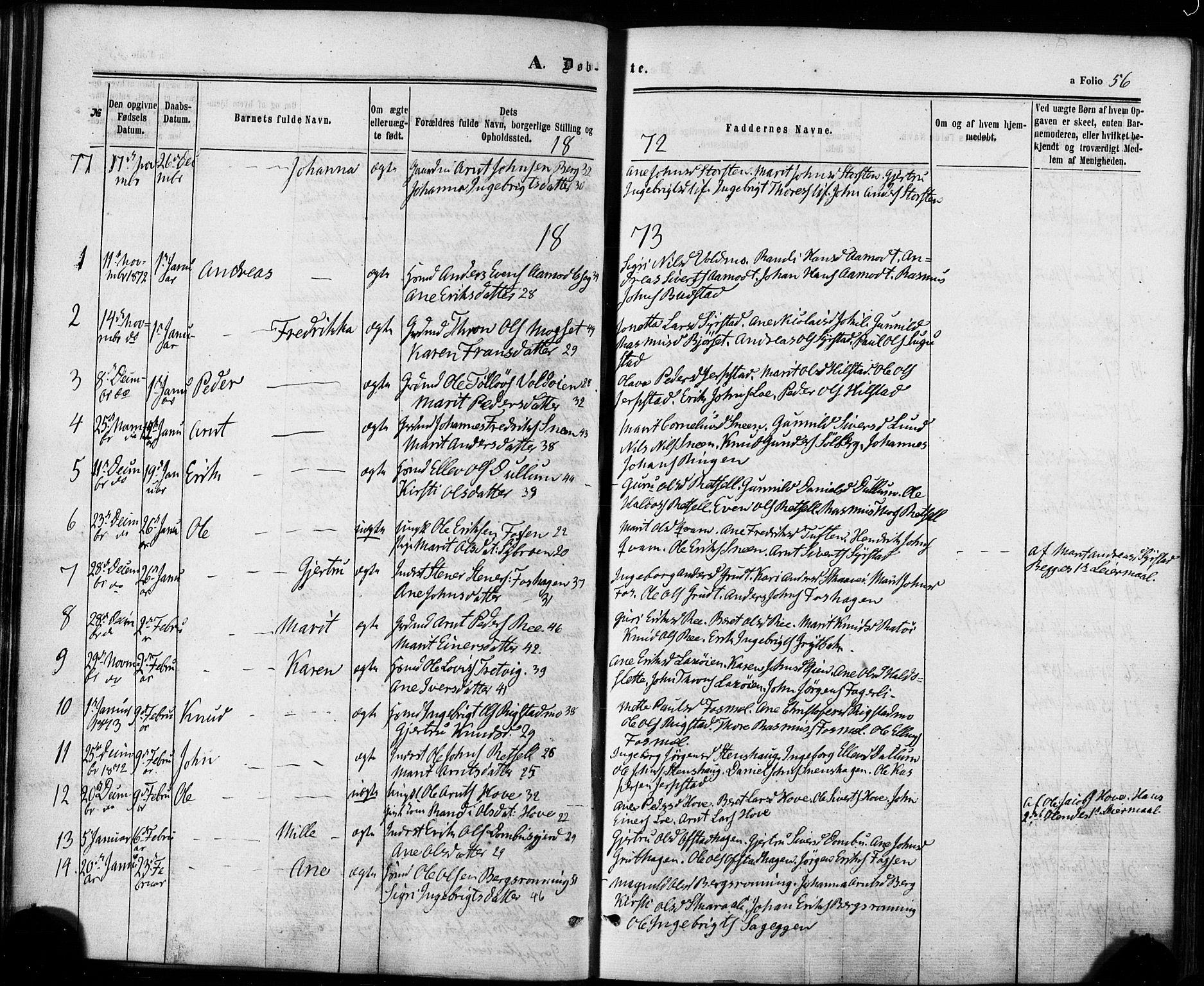 SAT, Ministerialprotokoller, klokkerbøker og fødselsregistre - Sør-Trøndelag, 672/L0856: Ministerialbok nr. 672A08, 1861-1881, s. 56