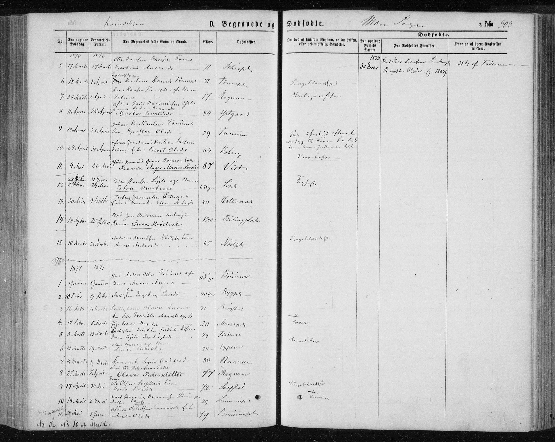 SAT, Ministerialprotokoller, klokkerbøker og fødselsregistre - Nord-Trøndelag, 735/L0345: Ministerialbok nr. 735A08 /1, 1863-1872, s. 303