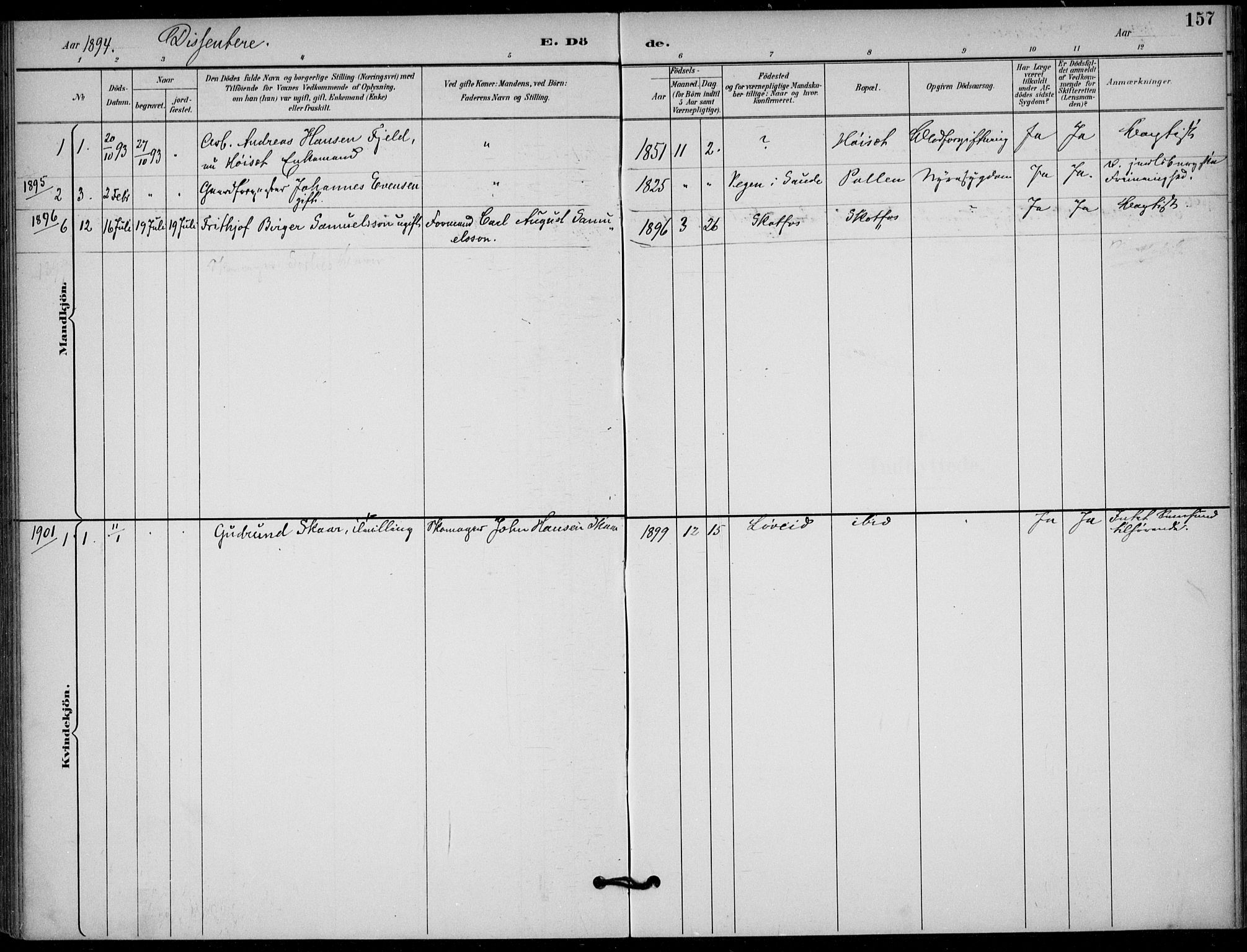SAKO, Solum kirkebøker, F/Fb/L0002: Ministerialbok nr. II 2, 1893-1901, s. 157