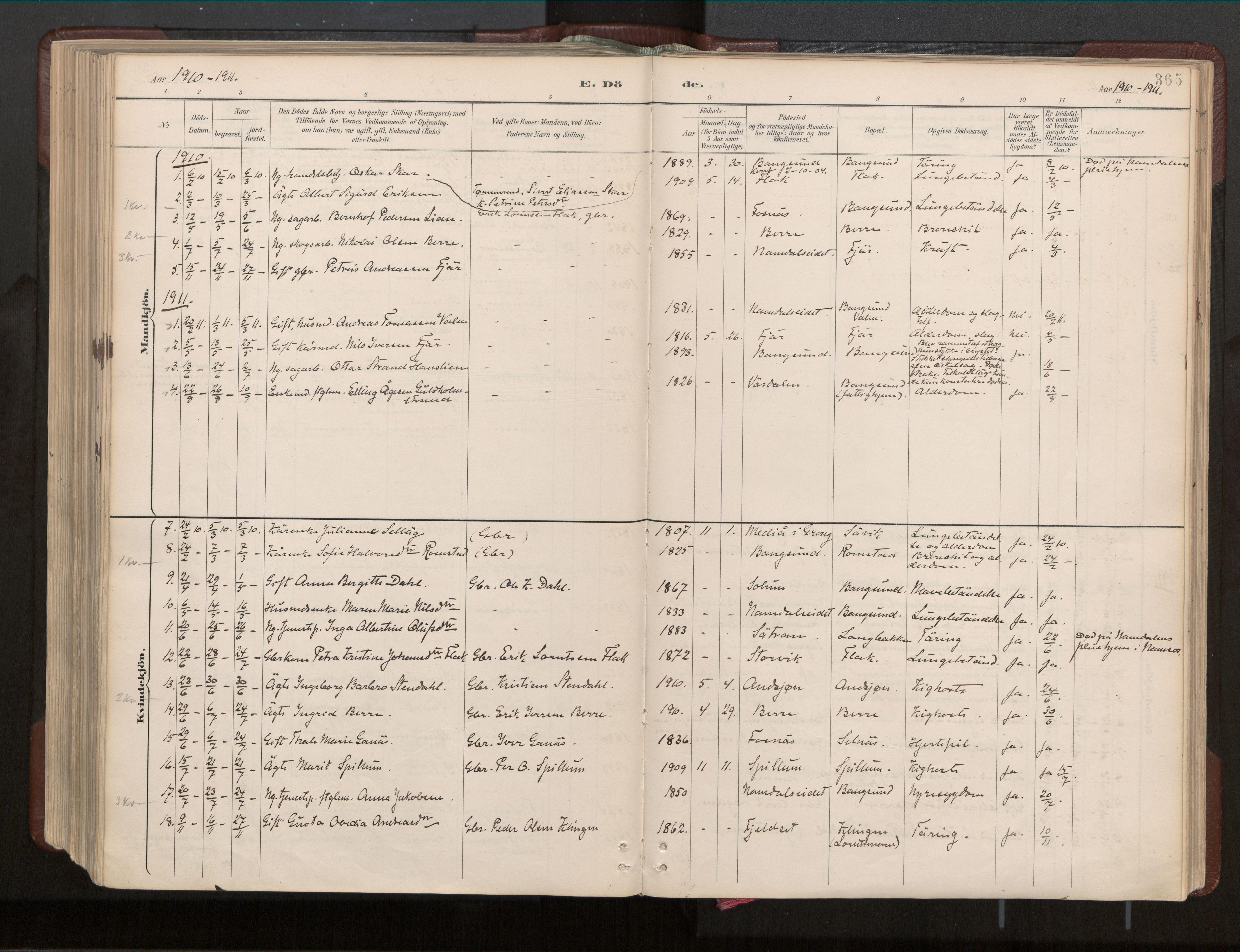 SAT, Ministerialprotokoller, klokkerbøker og fødselsregistre - Nord-Trøndelag, 770/L0589: Ministerialbok nr. 770A03, 1887-1929, s. 365
