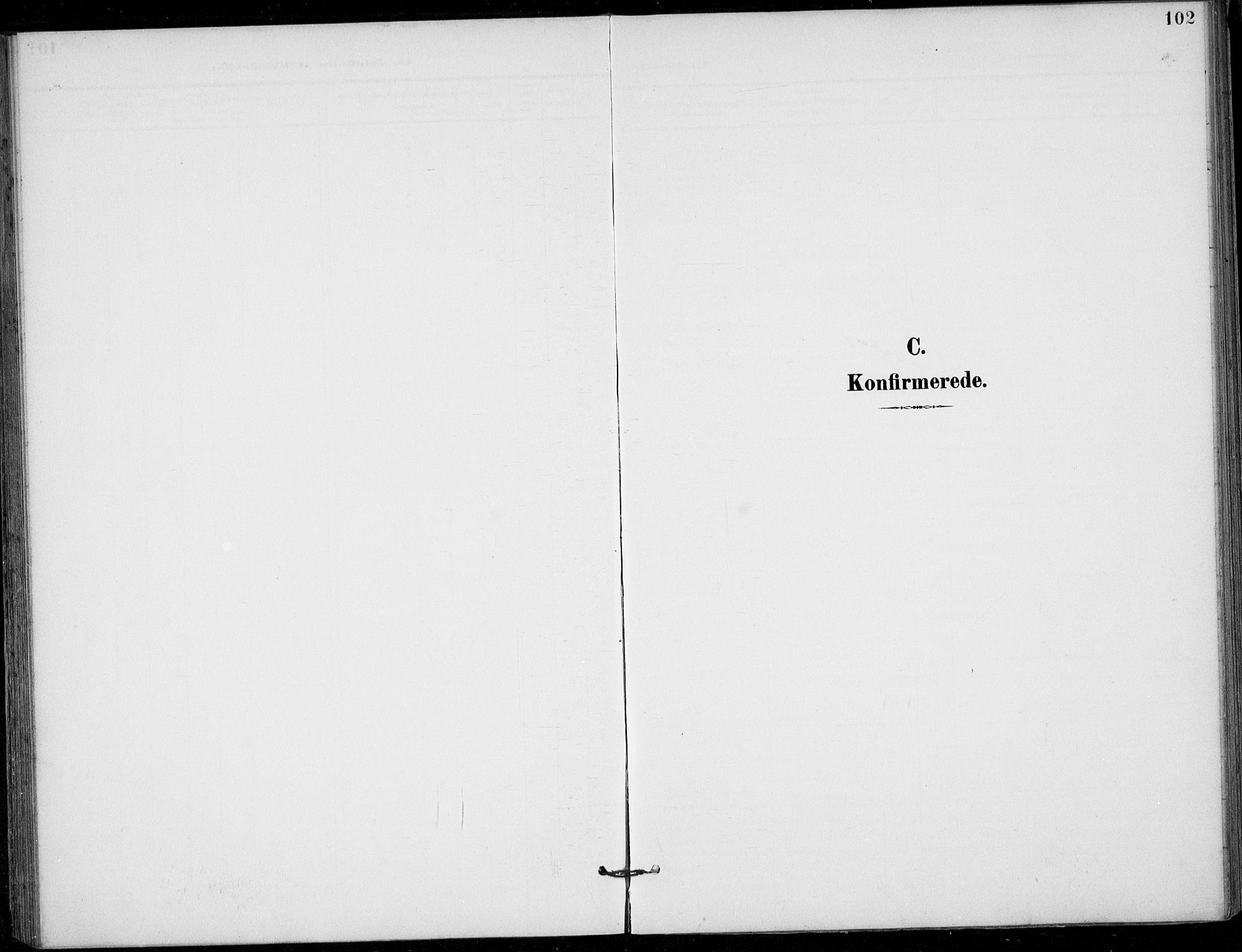SAKO, Siljan kirkebøker, F/Fa/L0003: Ministerialbok nr. 3, 1896-1910, s. 102