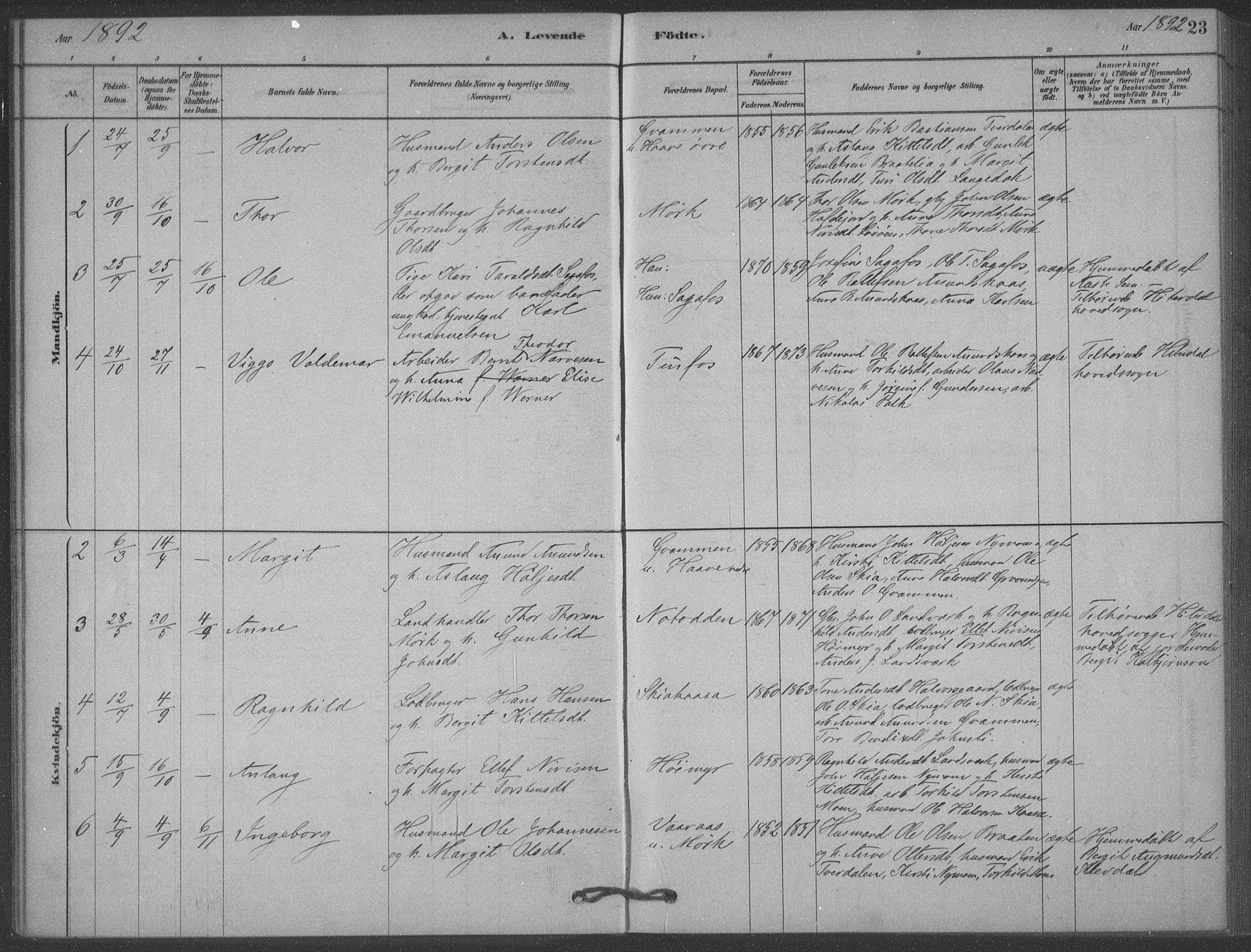 SAKO, Heddal kirkebøker, F/Fb/L0002: Ministerialbok nr. II 2, 1878-1913, s. 23