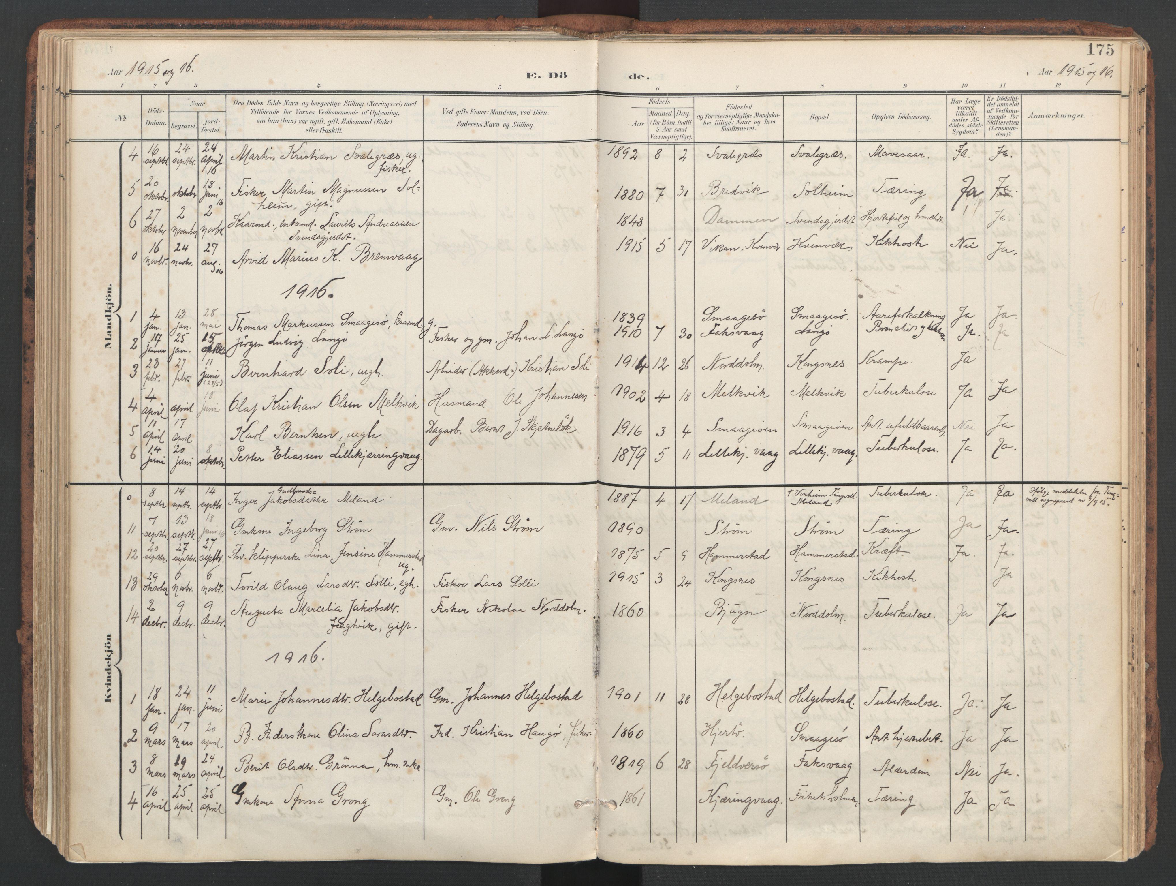 SAT, Ministerialprotokoller, klokkerbøker og fødselsregistre - Sør-Trøndelag, 634/L0537: Ministerialbok nr. 634A13, 1896-1922, s. 175