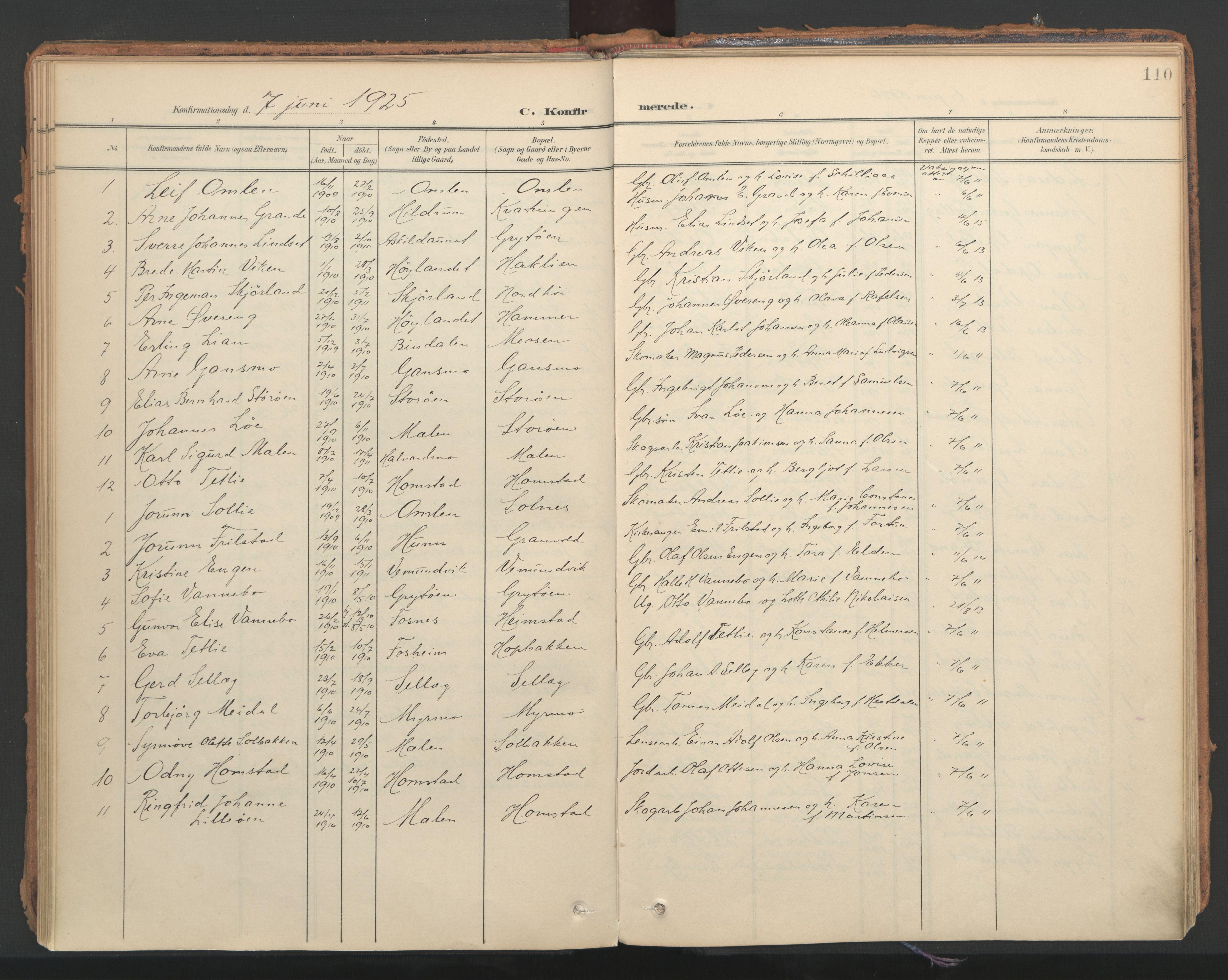 SAT, Ministerialprotokoller, klokkerbøker og fødselsregistre - Nord-Trøndelag, 766/L0564: Ministerialbok nr. 767A02, 1900-1932, s. 110