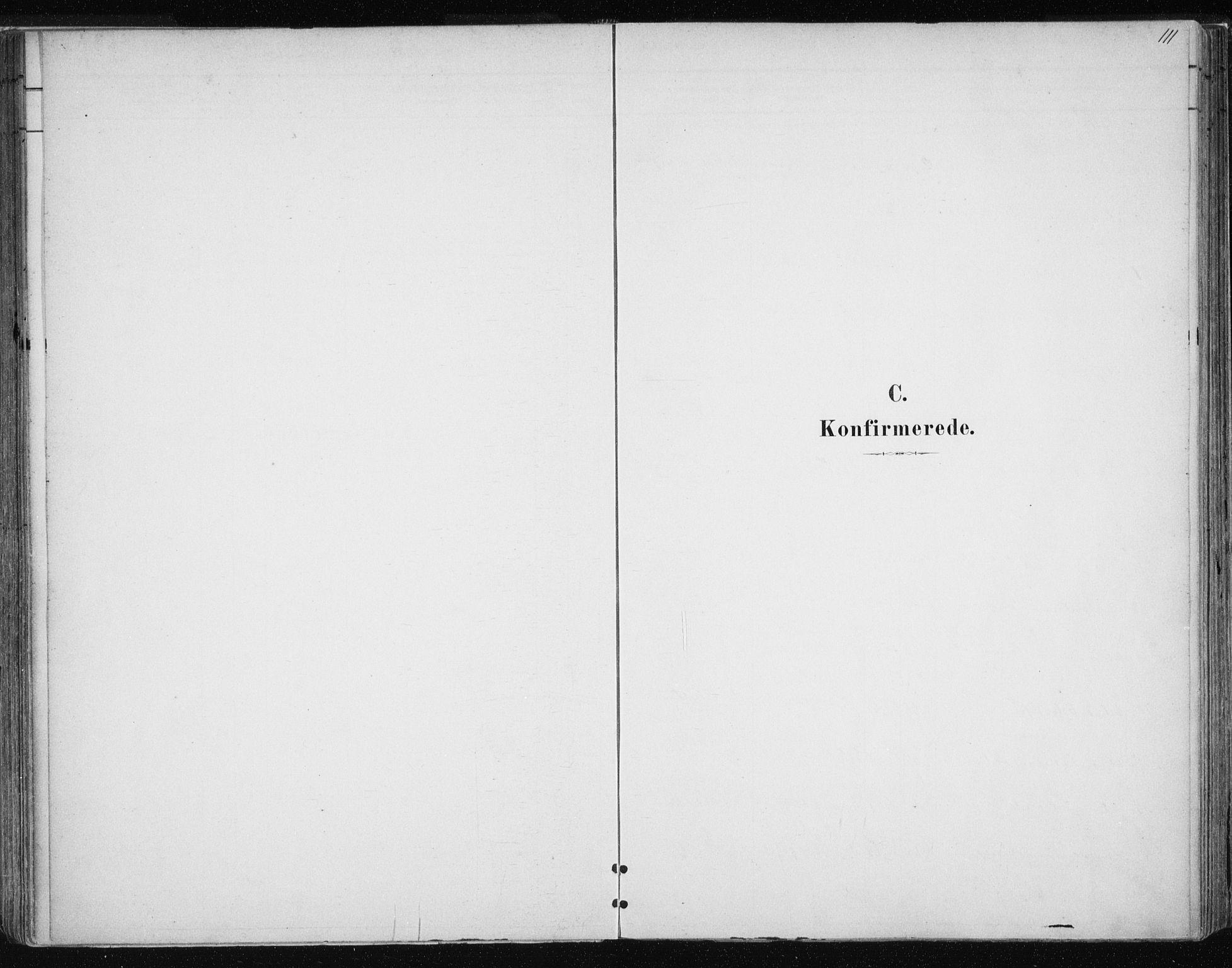 SATØ, Tromsøysund sokneprestkontor, G/Ga/L0004kirke: Ministerialbok nr. 4, 1880-1888, s. 111