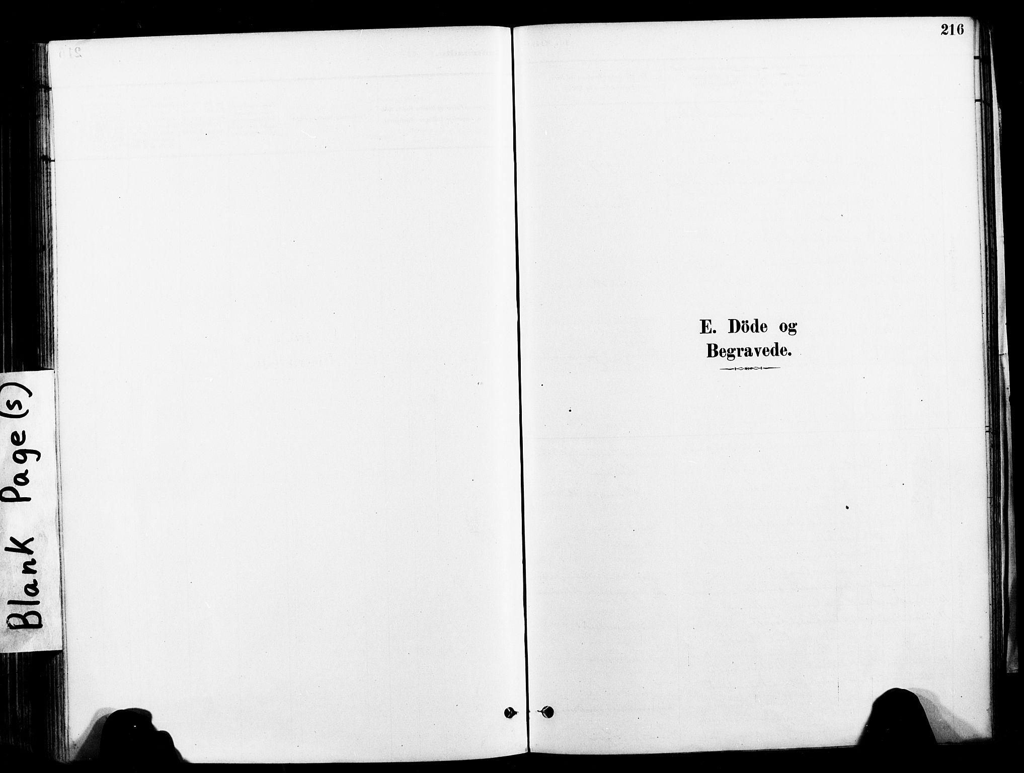 SAT, Ministerialprotokoller, klokkerbøker og fødselsregistre - Nord-Trøndelag, 709/L0077: Ministerialbok nr. 709A17, 1880-1895, s. 216
