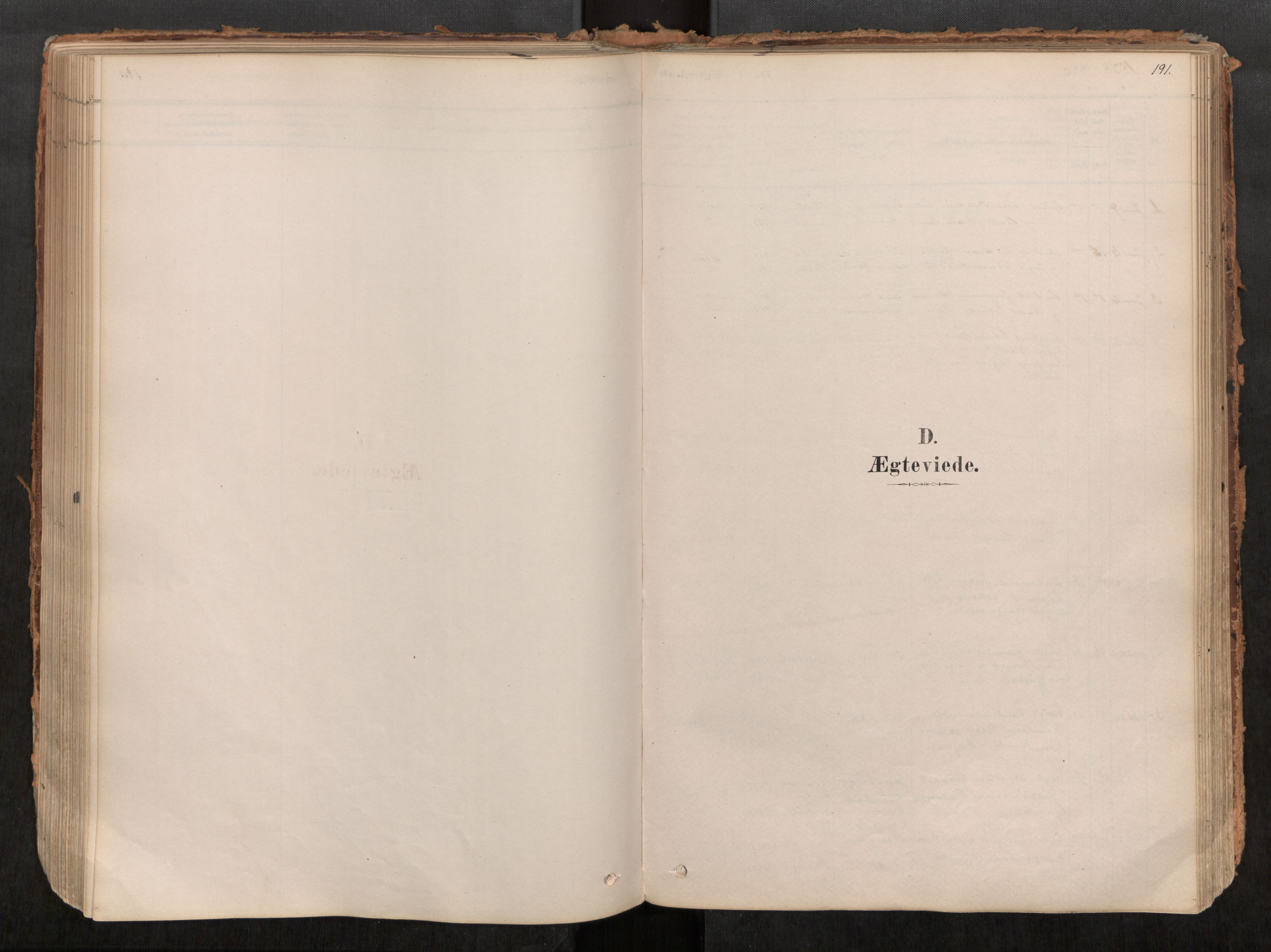 SAT, Grytten sokneprestkontor, Ministerialbok nr. 545A03, 1878-1920, s. 191