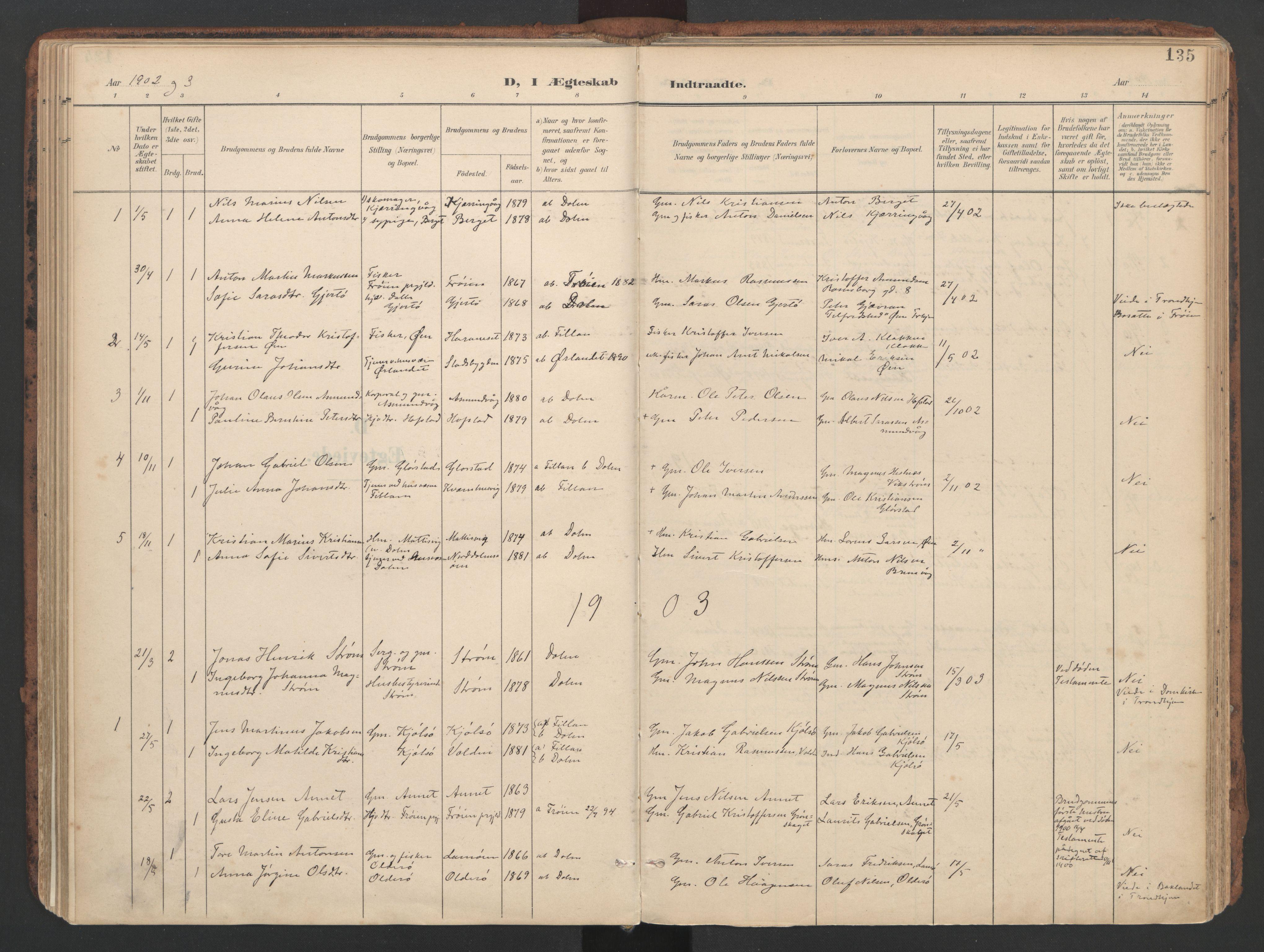 SAT, Ministerialprotokoller, klokkerbøker og fødselsregistre - Sør-Trøndelag, 634/L0537: Ministerialbok nr. 634A13, 1896-1922, s. 135