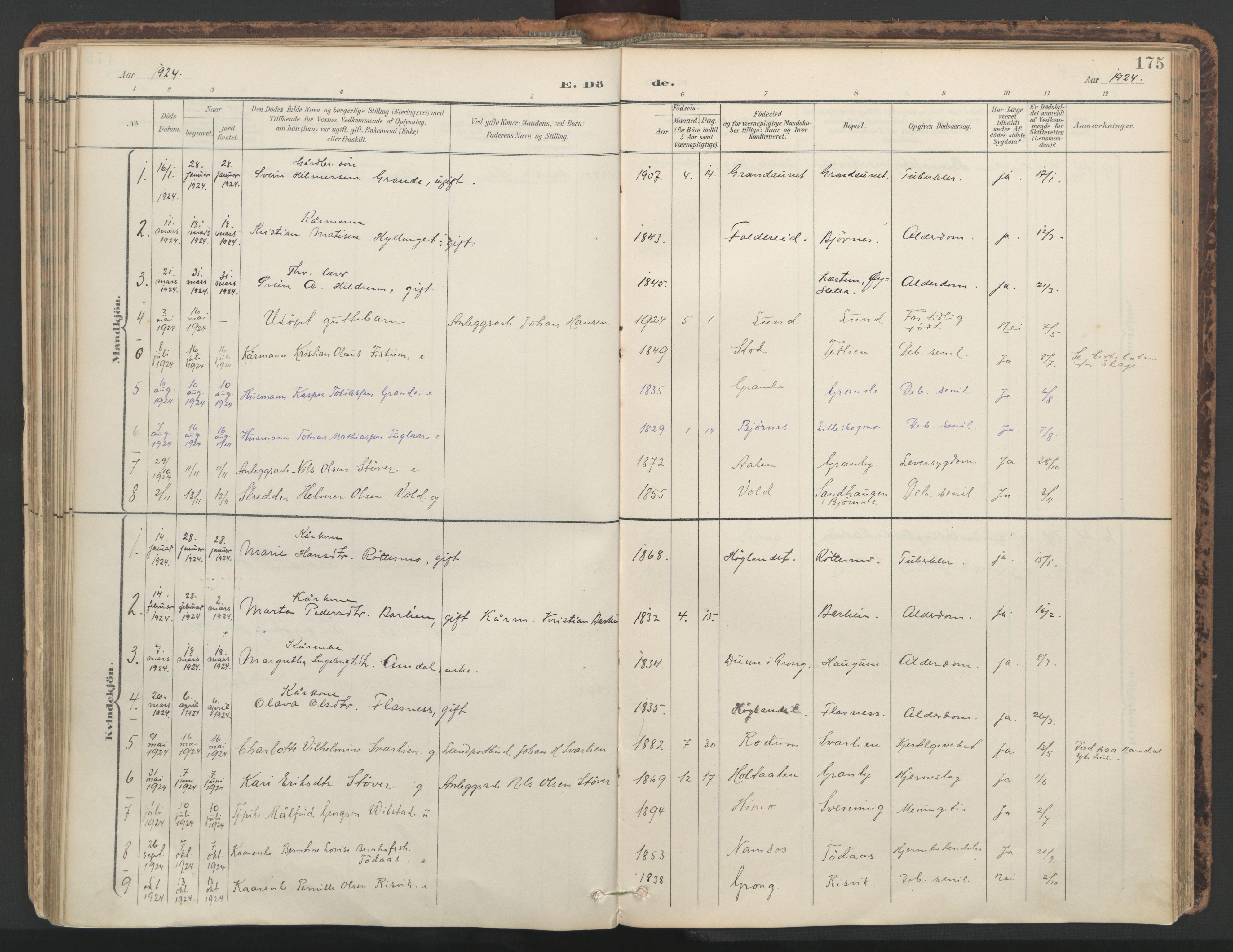 SAT, Ministerialprotokoller, klokkerbøker og fødselsregistre - Nord-Trøndelag, 764/L0556: Ministerialbok nr. 764A11, 1897-1924, s. 175