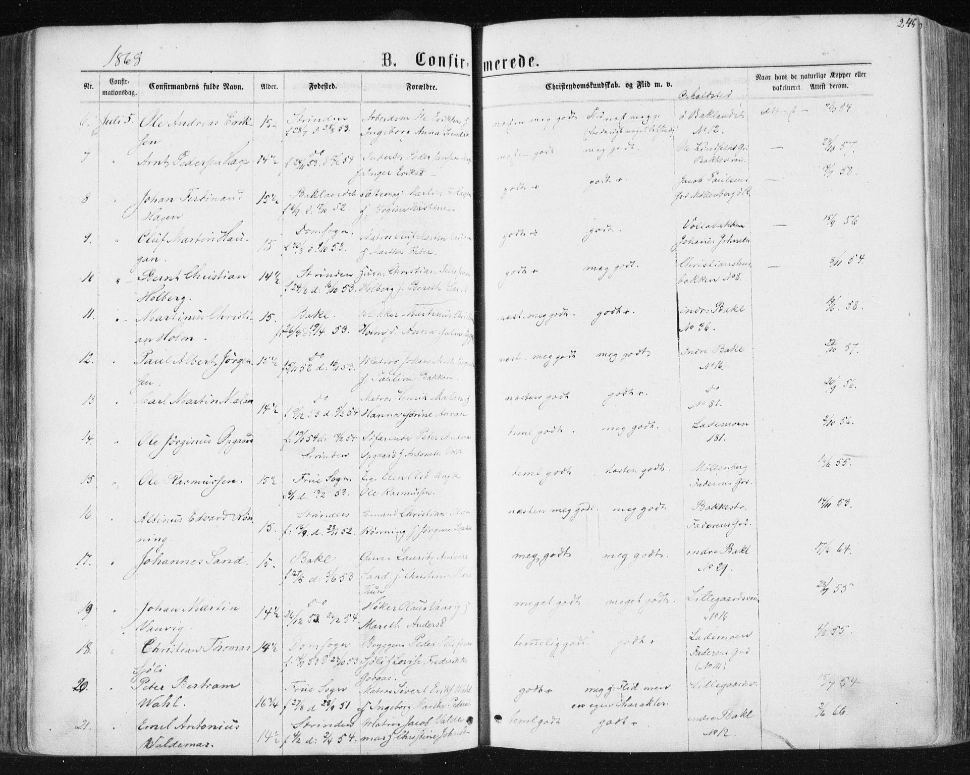 SAT, Ministerialprotokoller, klokkerbøker og fødselsregistre - Sør-Trøndelag, 604/L0186: Ministerialbok nr. 604A07, 1866-1877, s. 245