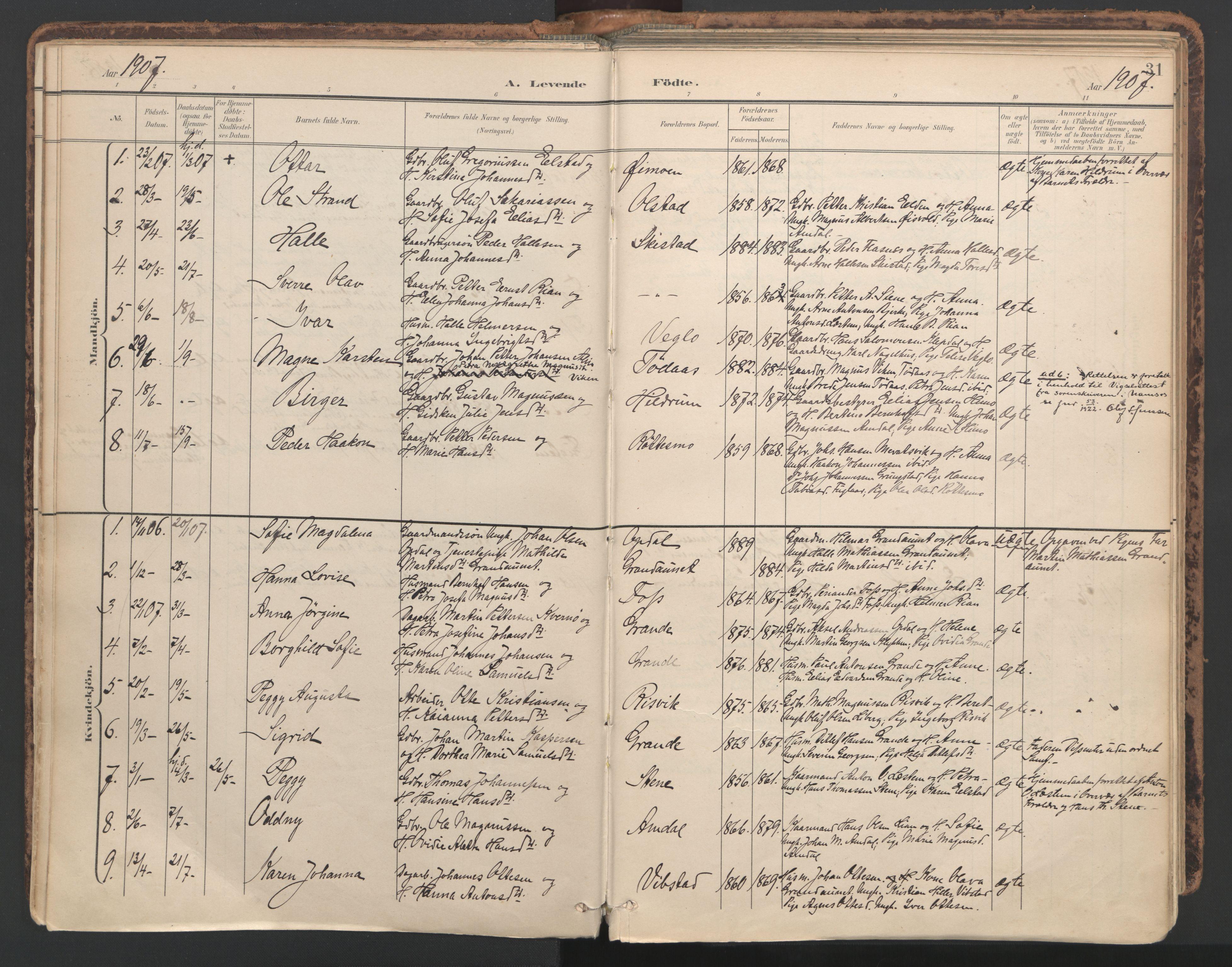 SAT, Ministerialprotokoller, klokkerbøker og fødselsregistre - Nord-Trøndelag, 764/L0556: Ministerialbok nr. 764A11, 1897-1924, s. 31