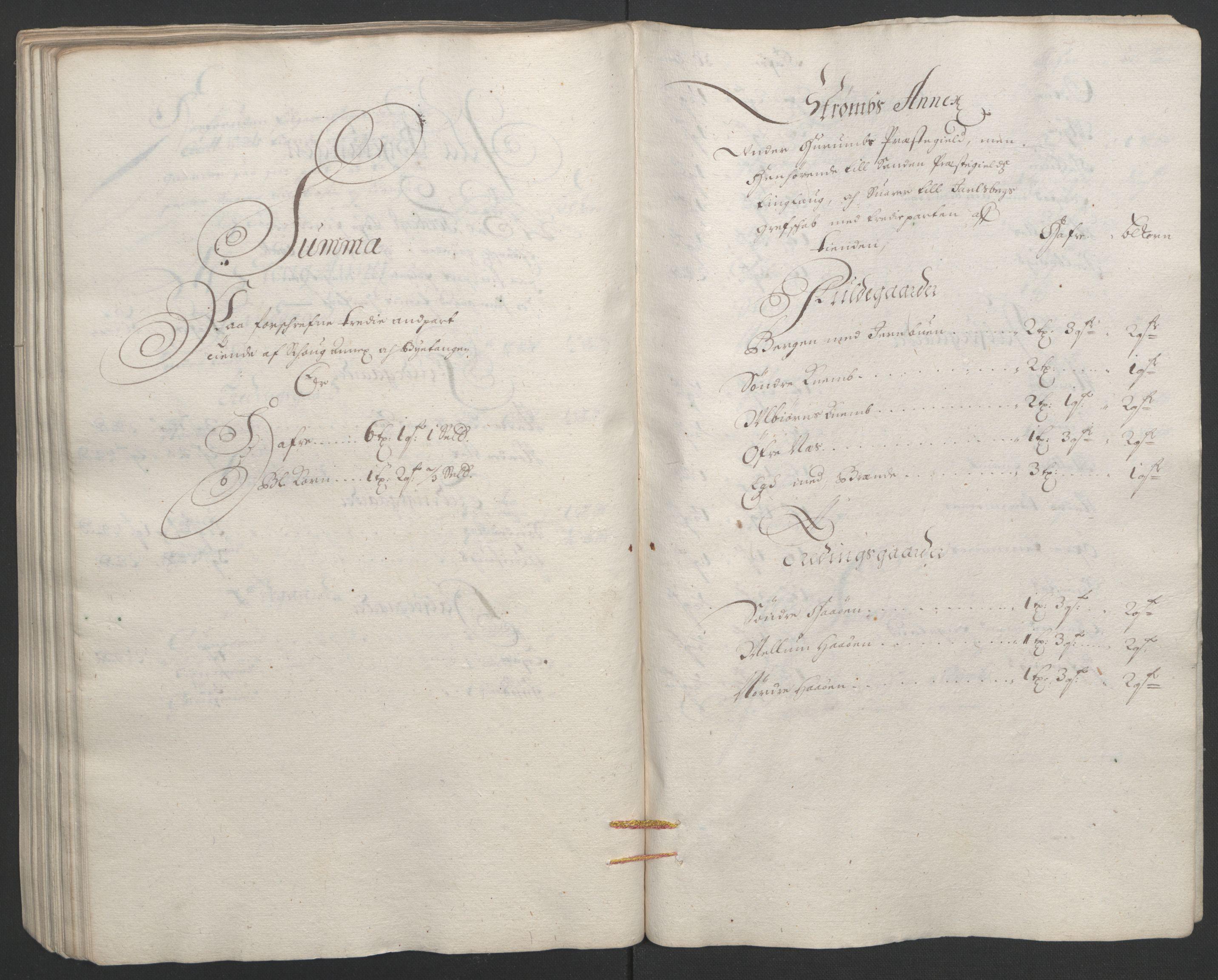 RA, Rentekammeret inntil 1814, Reviderte regnskaper, Fogderegnskap, R32/L1864: Fogderegnskap Jarlsberg grevskap, 1691, s. 407