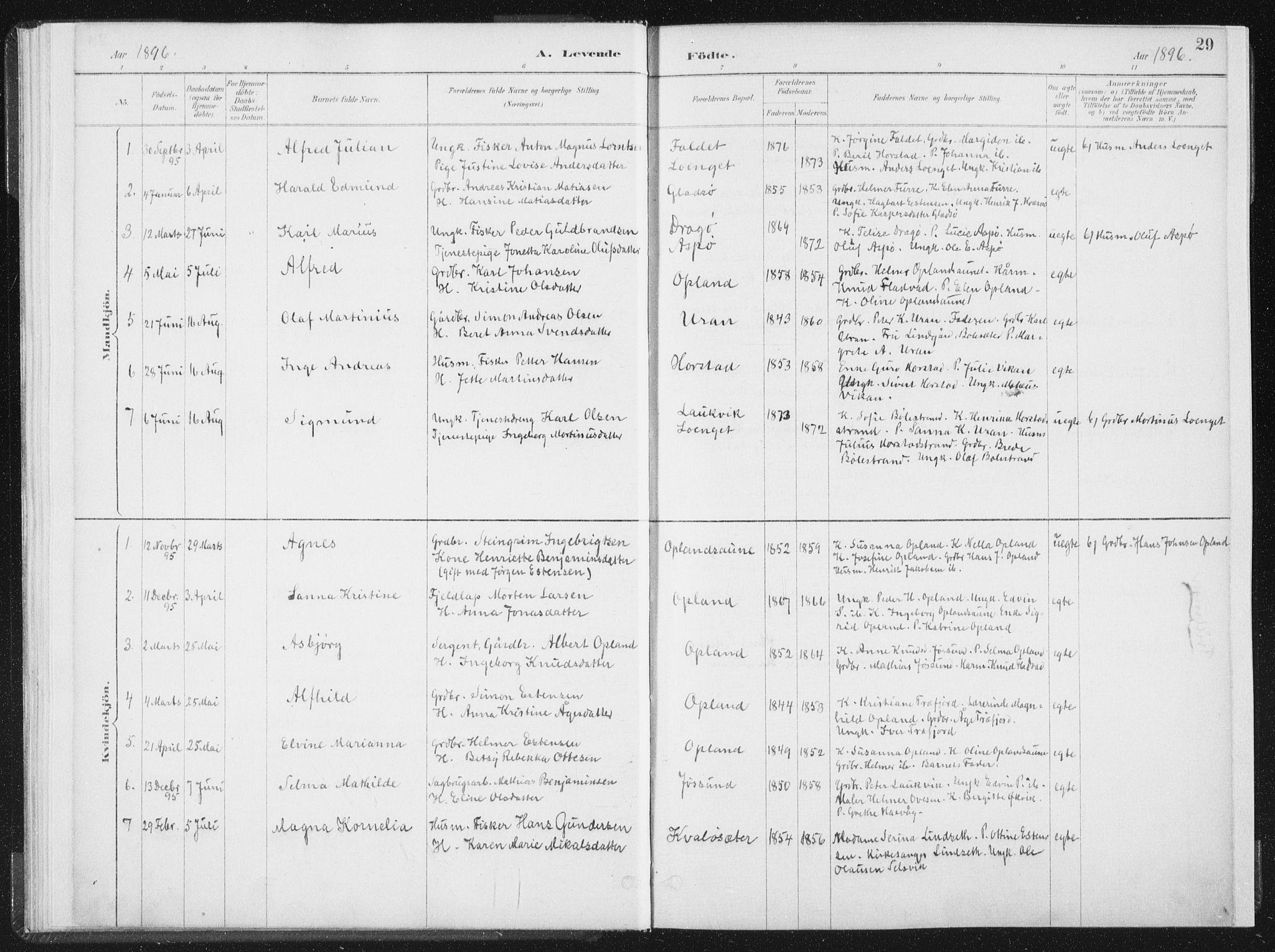 SAT, Ministerialprotokoller, klokkerbøker og fødselsregistre - Nord-Trøndelag, 771/L0597: Ministerialbok nr. 771A04, 1885-1910, s. 29