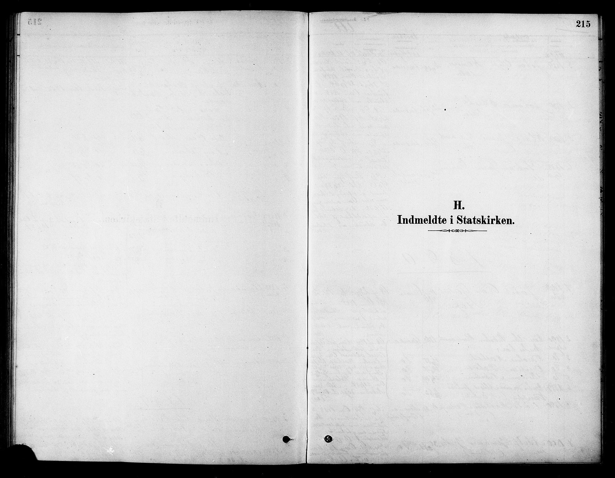 SAT, Ministerialprotokoller, klokkerbøker og fødselsregistre - Sør-Trøndelag, 658/L0722: Ministerialbok nr. 658A01, 1879-1896, s. 215