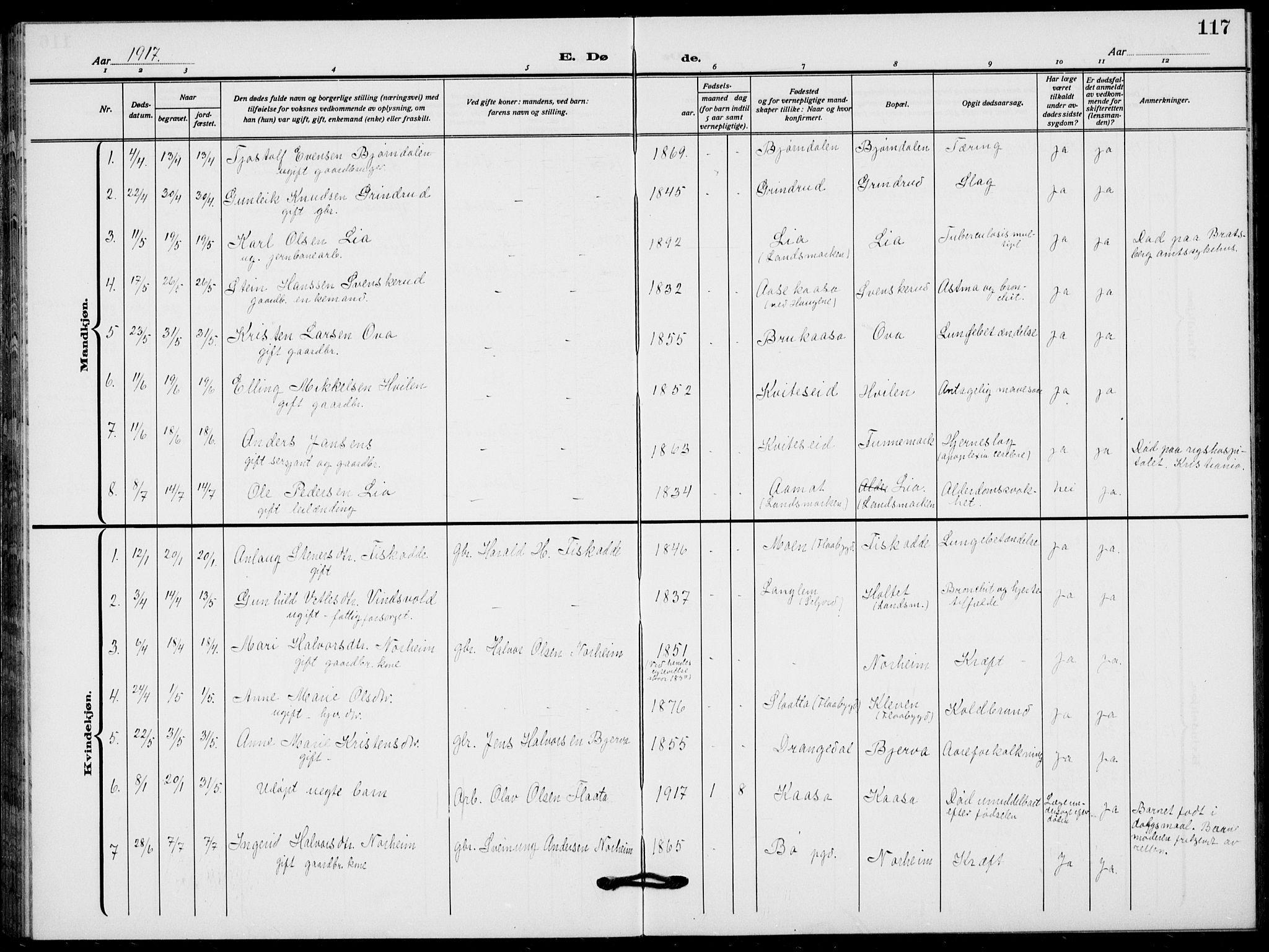 SAKO, Lunde kirkebøker, F/Fa/L0005: Ministerialbok nr. I 5, 1914-1922, s. 117