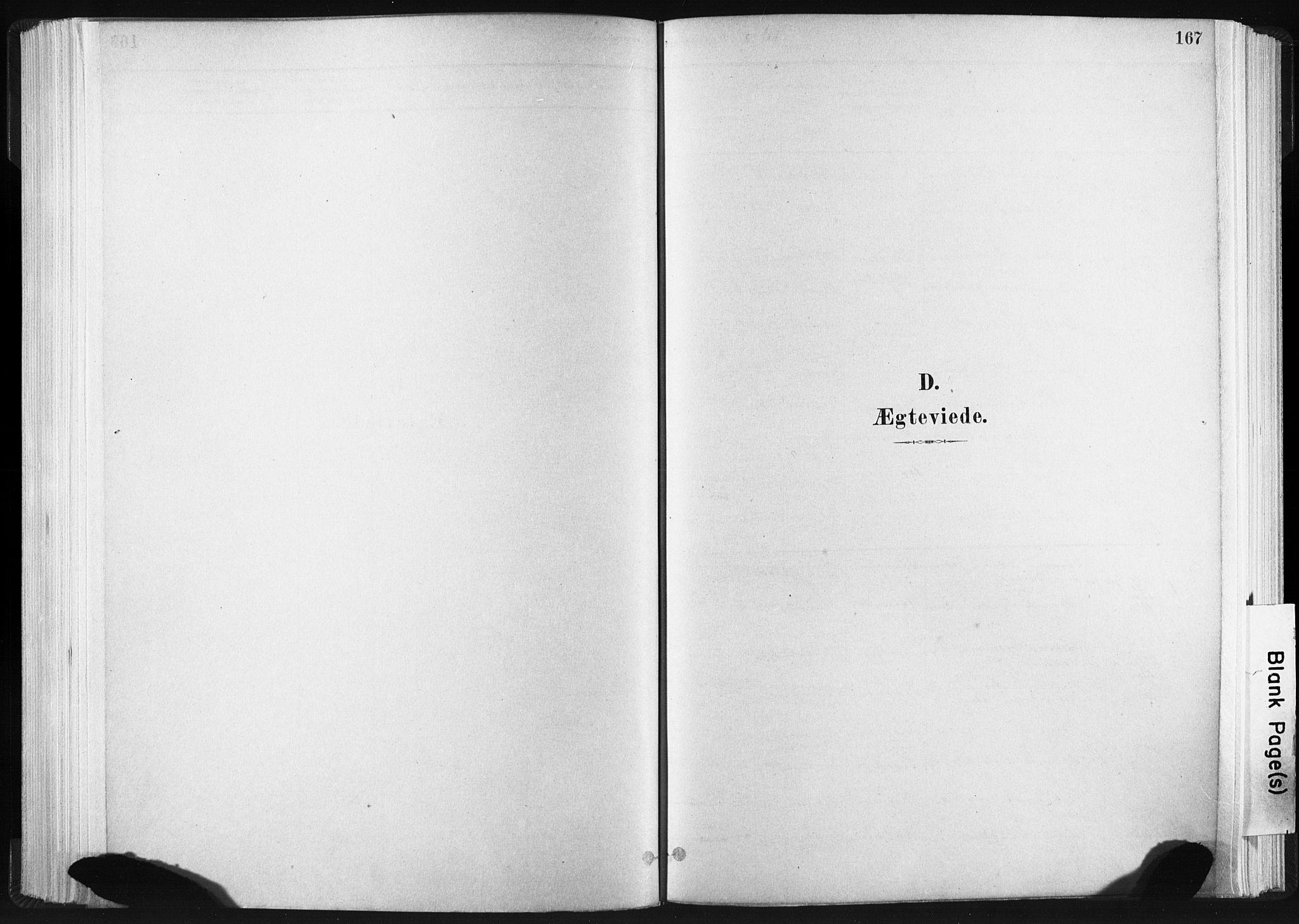 SAT, Ministerialprotokoller, klokkerbøker og fødselsregistre - Sør-Trøndelag, 665/L0773: Ministerialbok nr. 665A08, 1879-1905, s. 167