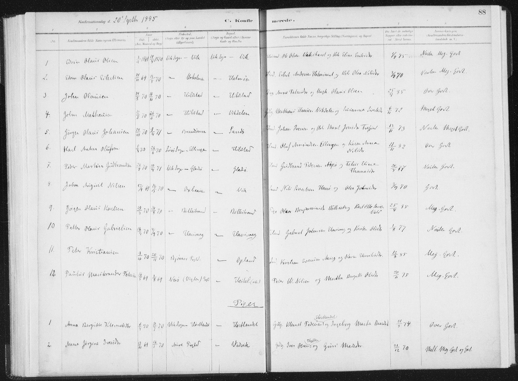 SAT, Ministerialprotokoller, klokkerbøker og fødselsregistre - Nord-Trøndelag, 771/L0597: Ministerialbok nr. 771A04, 1885-1910, s. 88