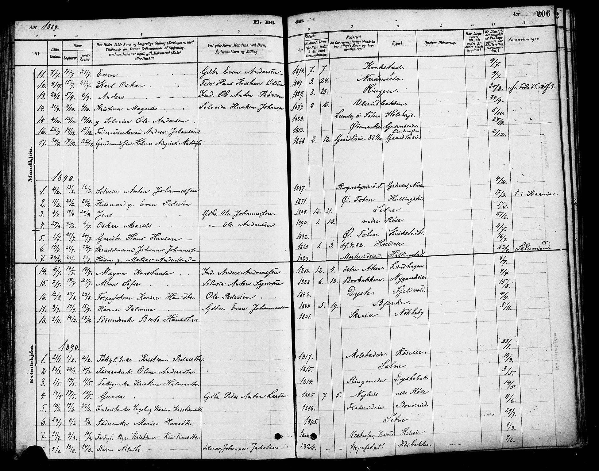 SAH, Vestre Toten prestekontor, H/Ha/Haa/L0010: Ministerialbok nr. 10, 1878-1894, s. 206