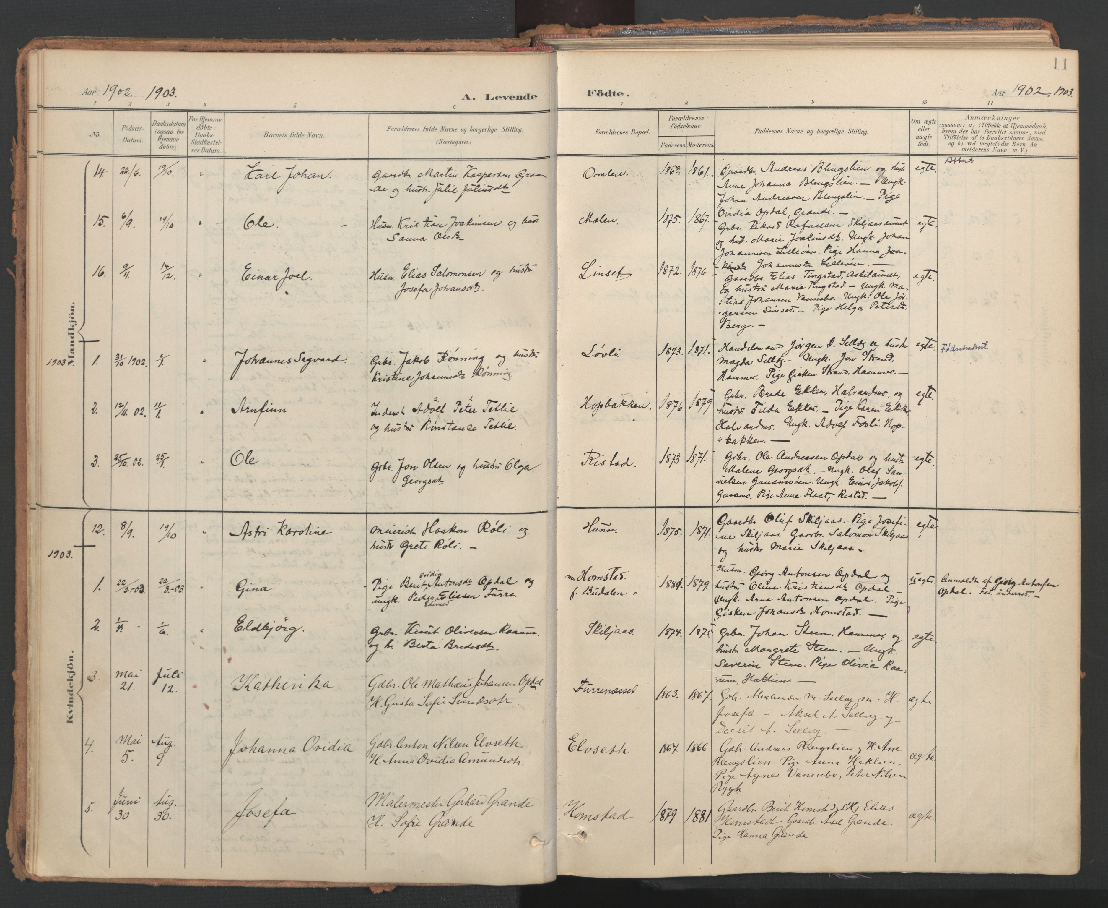 SAT, Ministerialprotokoller, klokkerbøker og fødselsregistre - Nord-Trøndelag, 766/L0564: Ministerialbok nr. 767A02, 1900-1932, s. 11