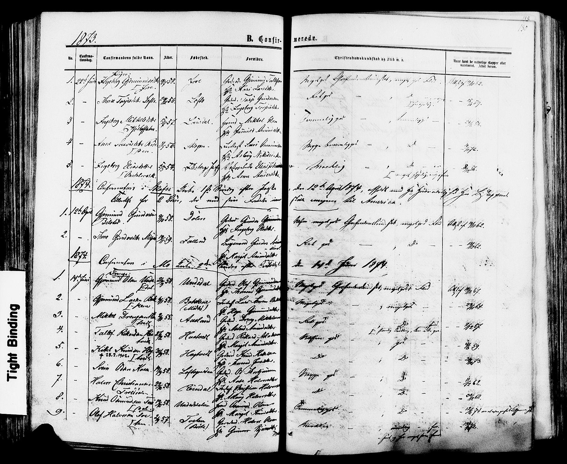 SAKO, Mo kirkebøker, F/Fa/L0006: Ministerialbok nr. I 6, 1865-1885, s. 130
