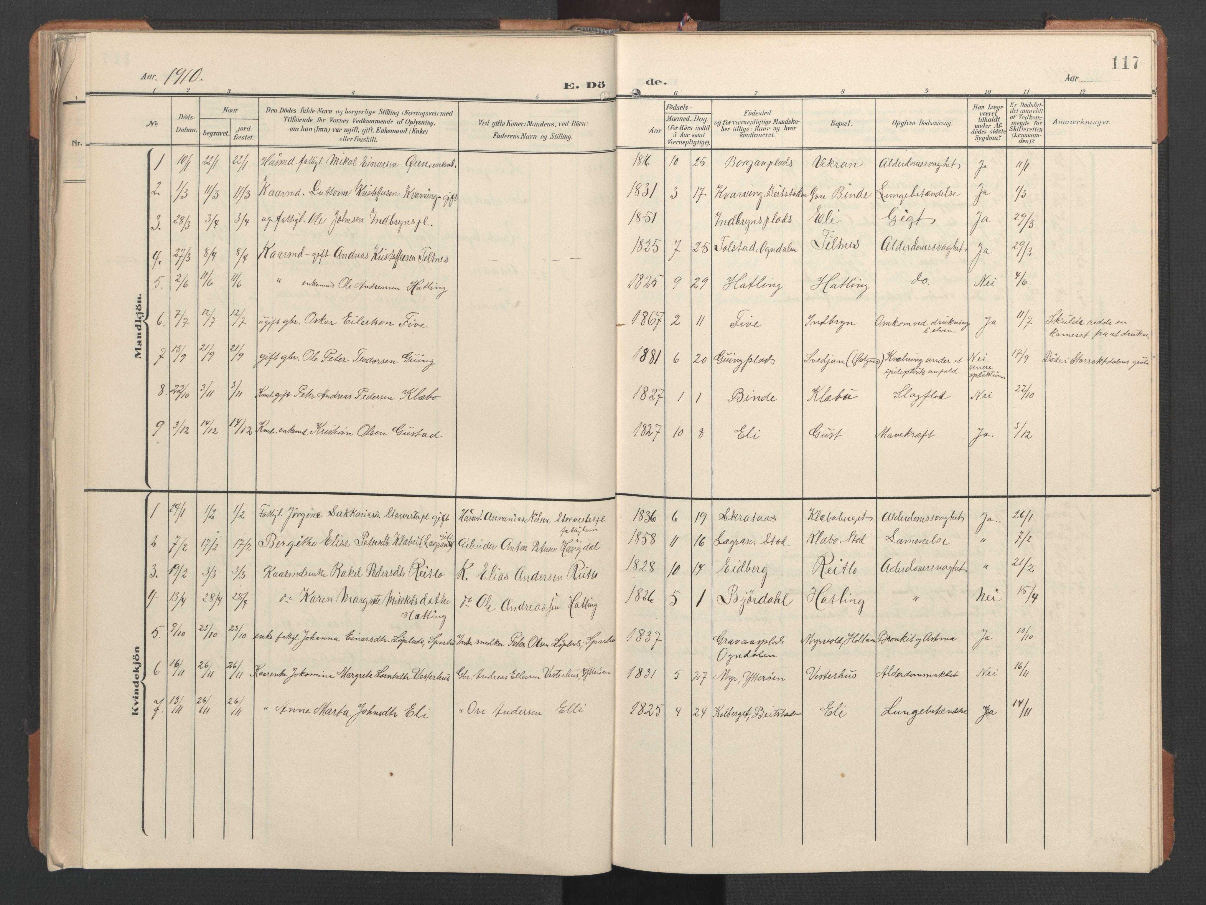 SAT, Ministerialprotokoller, klokkerbøker og fødselsregistre - Nord-Trøndelag, 746/L0455: Klokkerbok nr. 746C01, 1908-1933, s. 117