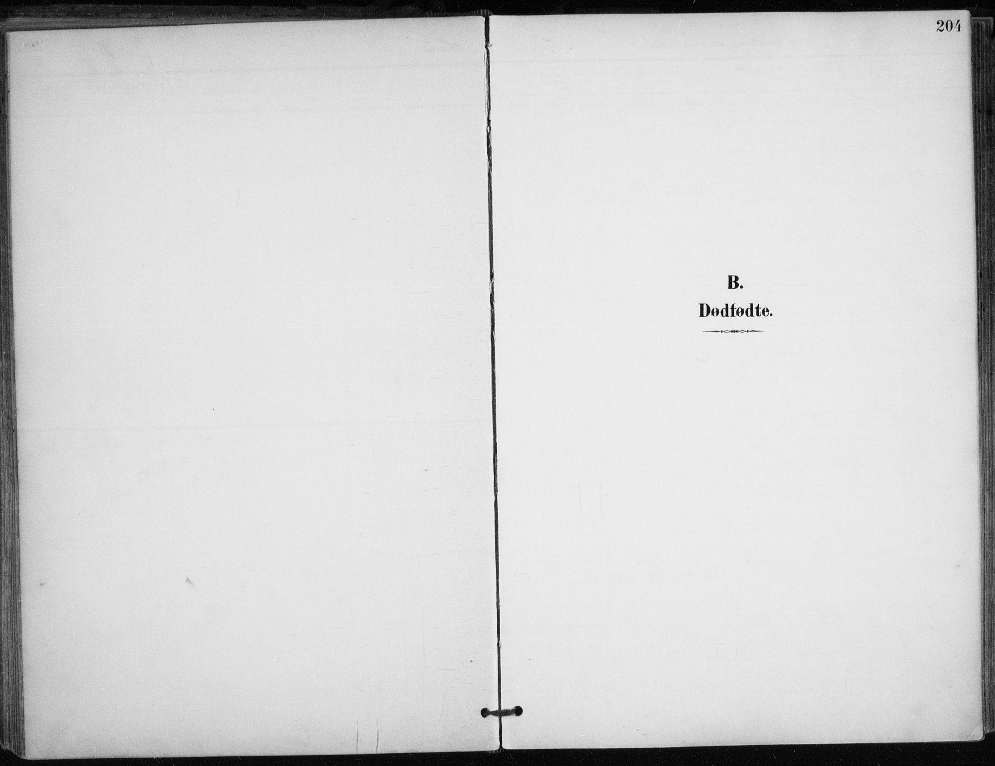 SATØ, Trondenes sokneprestkontor, H/Ha/L0017kirke: Ministerialbok nr. 17, 1899-1908, s. 204