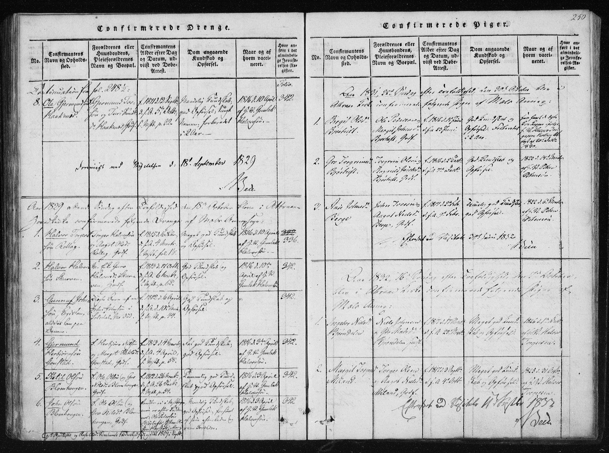 SAKO, Tinn kirkebøker, F/Fb/L0001: Ministerialbok nr. II 1, 1815-1843, s. 250