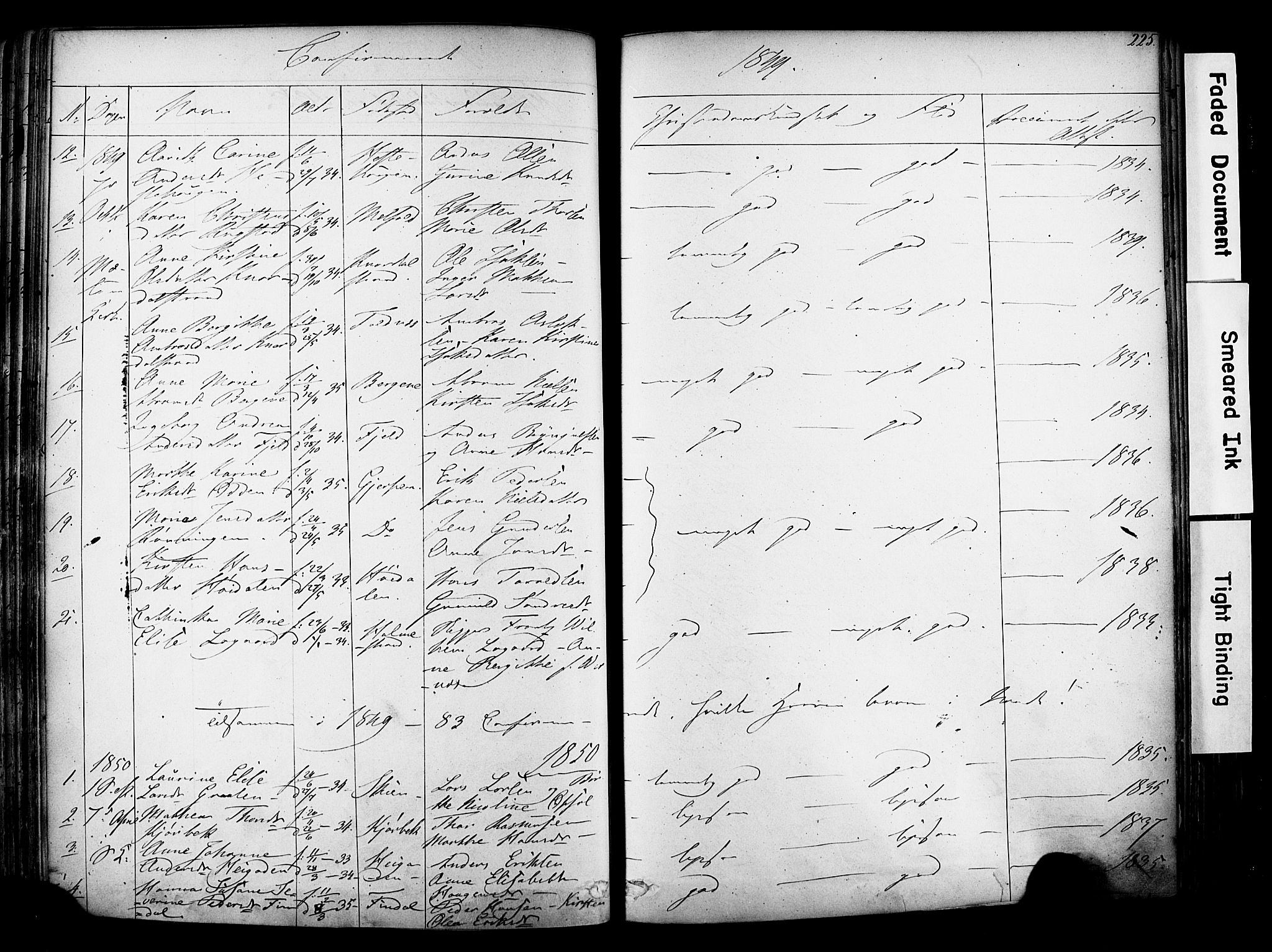 SAKO, Solum kirkebøker, F/Fa/L0006: Ministerialbok nr. I 6, 1844-1855, s. 225