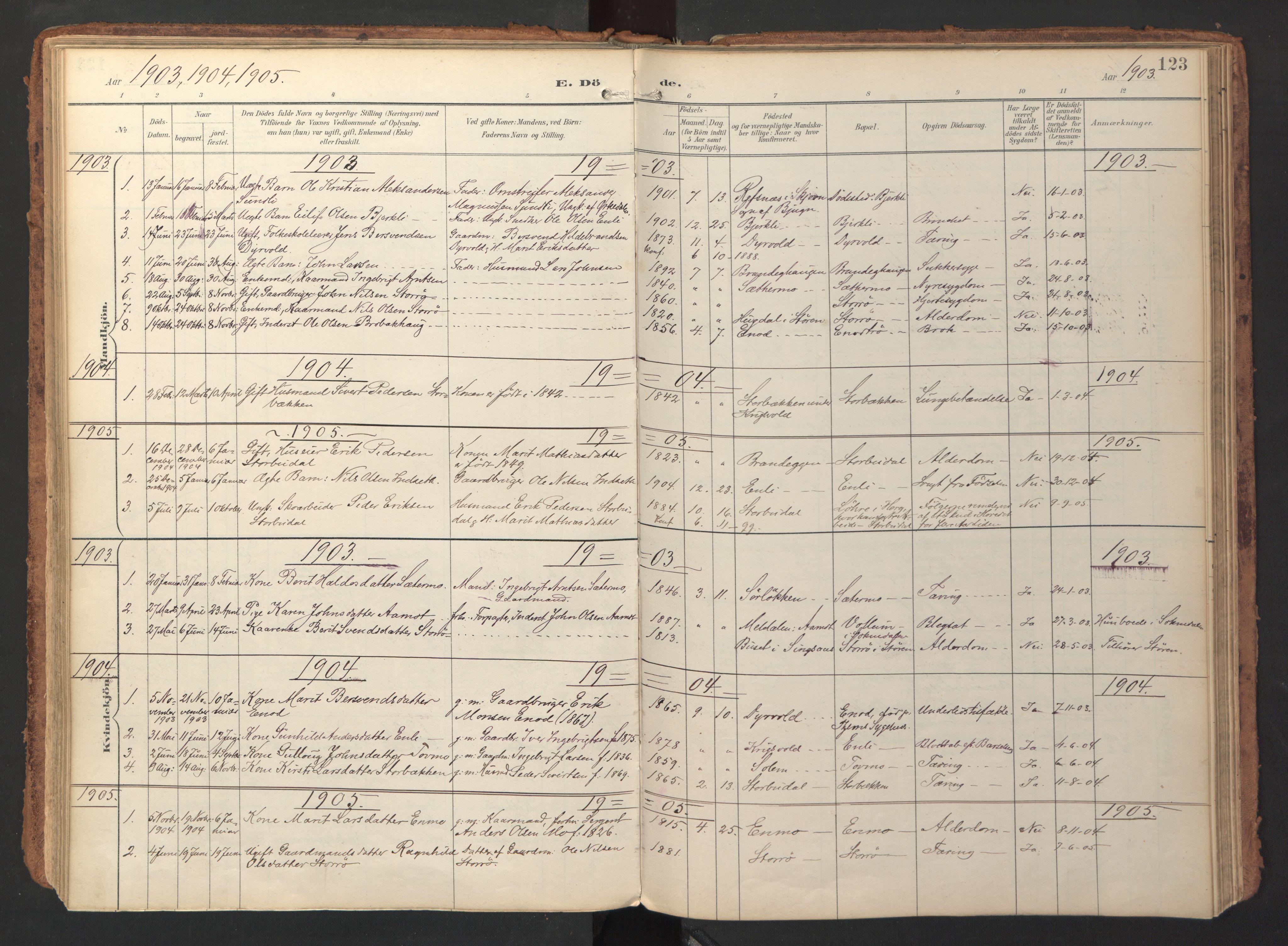 SAT, Ministerialprotokoller, klokkerbøker og fødselsregistre - Sør-Trøndelag, 690/L1050: Ministerialbok nr. 690A01, 1889-1929, s. 123