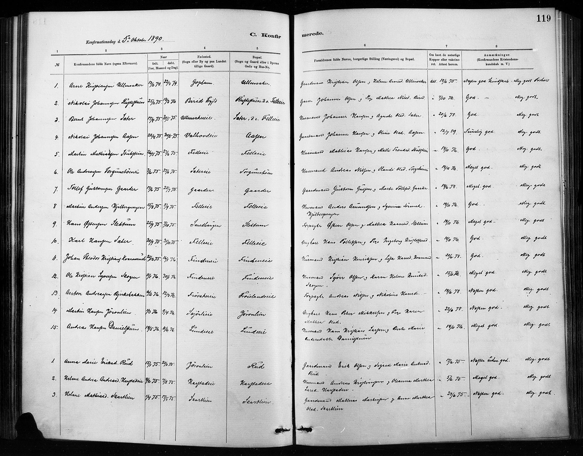 SAH, Nordre Land prestekontor, Ministerialbok nr. 4, 1882-1896, s. 119
