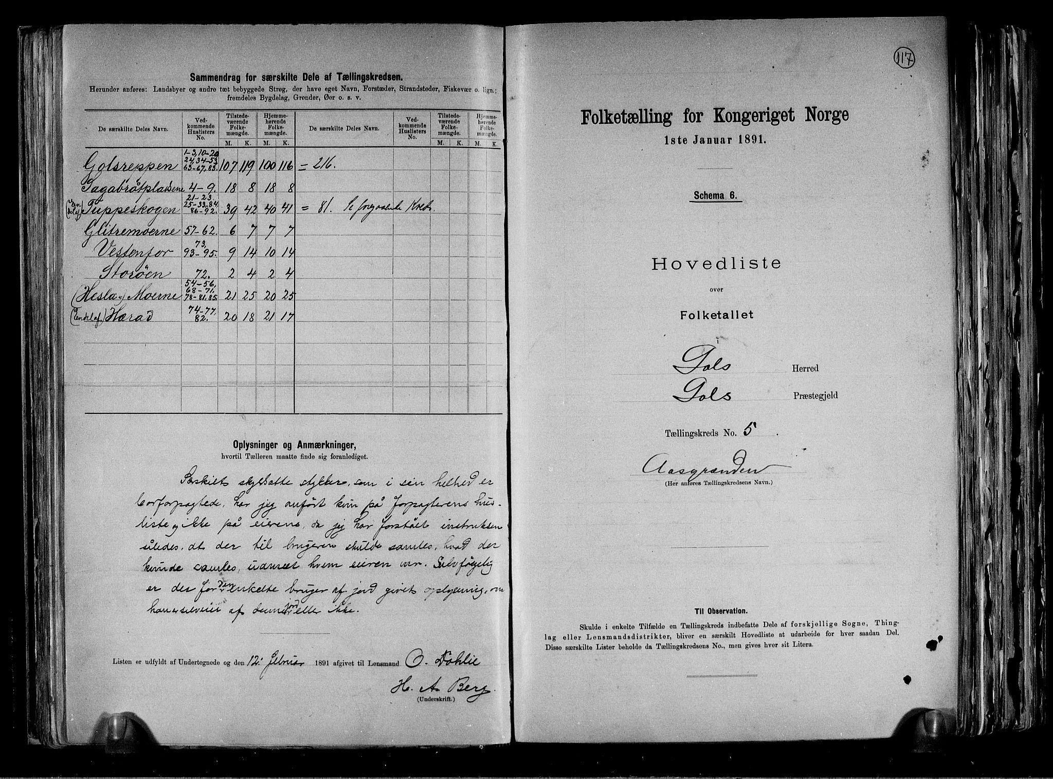 RA, Folketelling 1891 for 0617 Gol og Hemsedal herred, 1891, s. 12