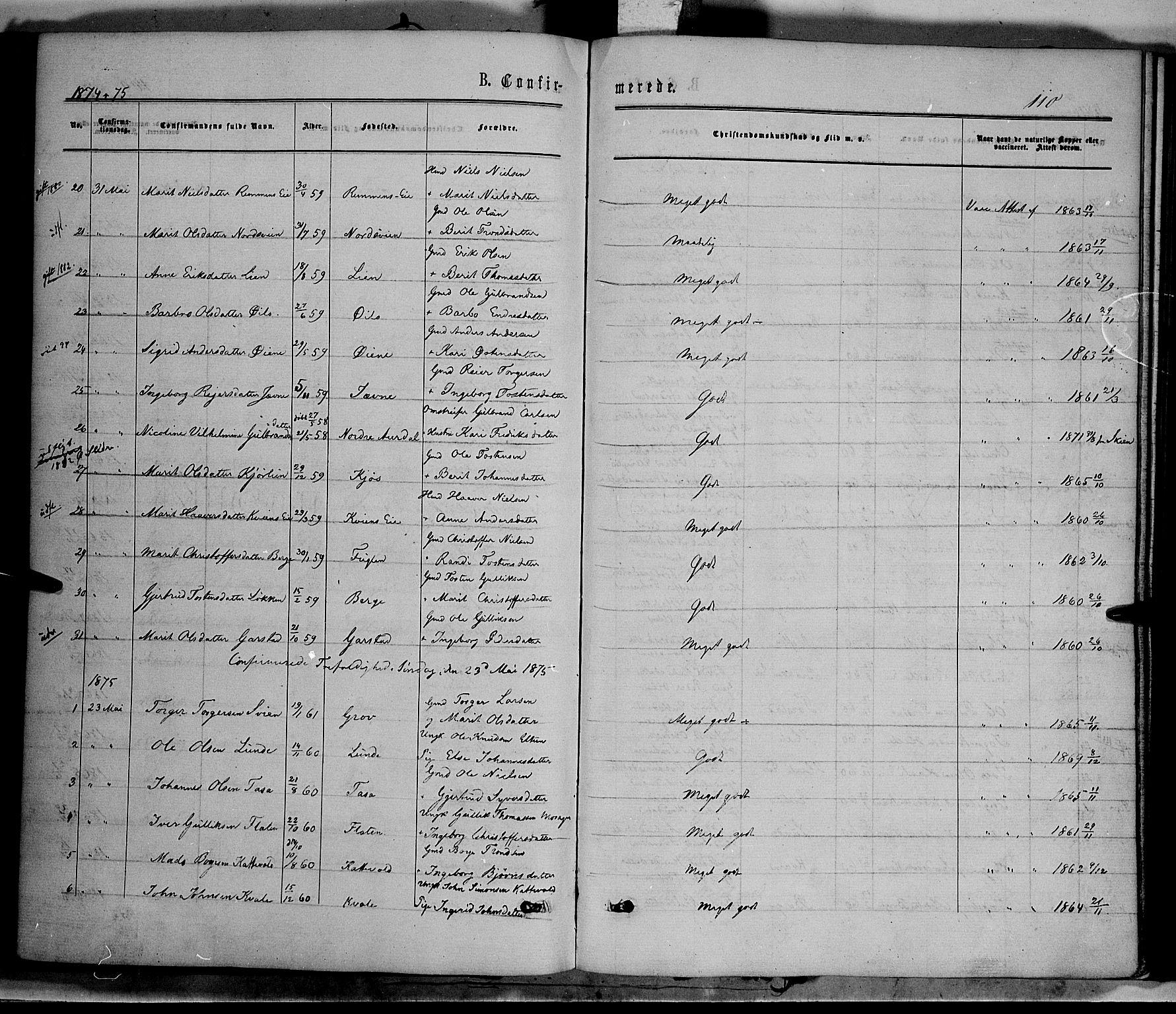 SAH, Vang prestekontor, Valdres, Ministerialbok nr. 7, 1865-1881, s. 110