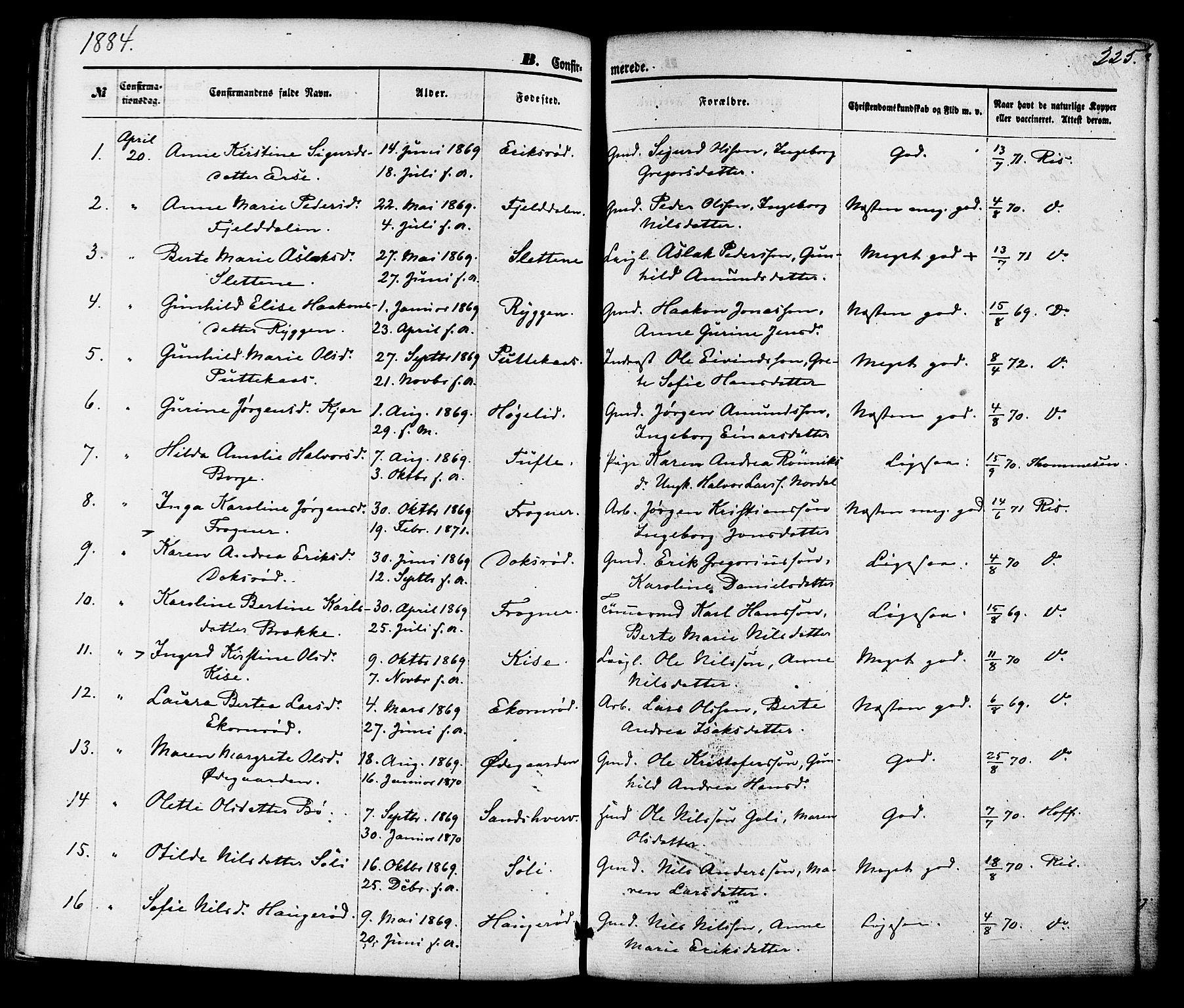 SAKO, Gjerpen kirkebøker, F/Fa/L0009: Ministerialbok nr. 9, 1872-1885, s. 225