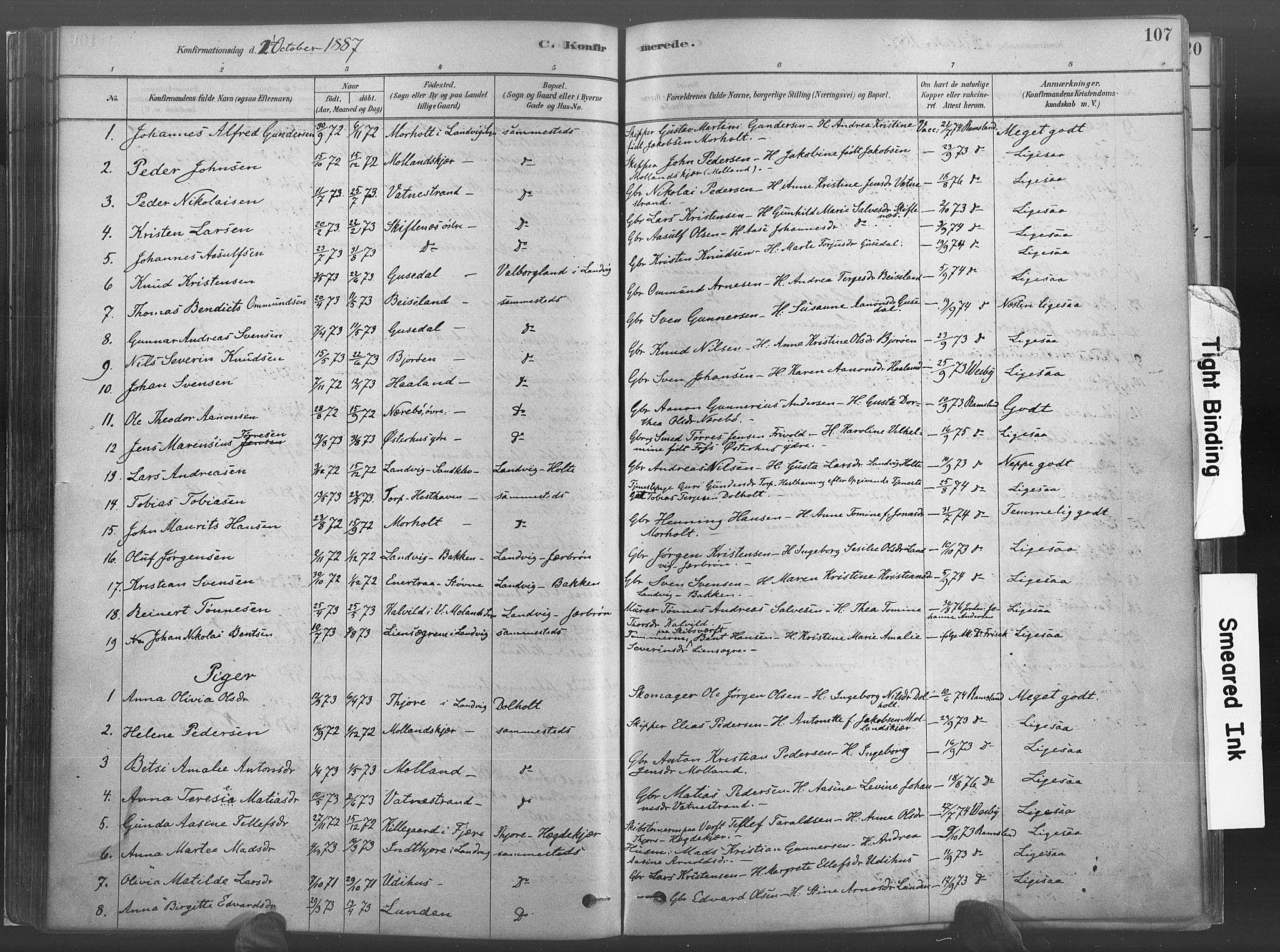 SAK, Hommedal sokneprestkontor, F/Fa/Fab/L0006: Ministerialbok nr. A 6, 1878-1897, s. 107