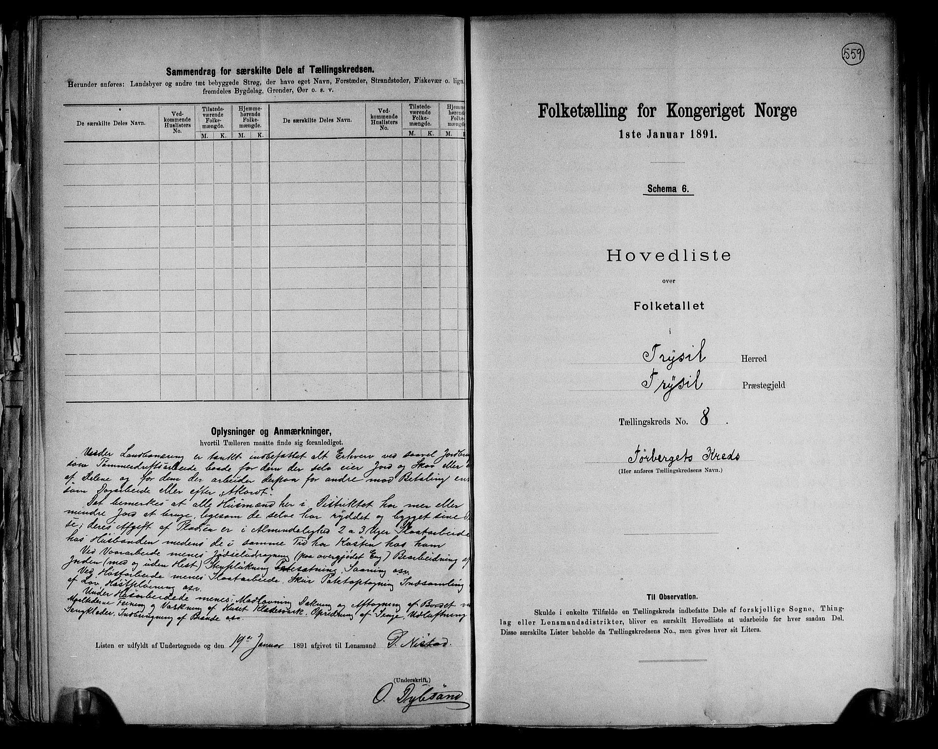 RA, Folketelling 1891 for 0428 Trysil herred, 1891, s. 21