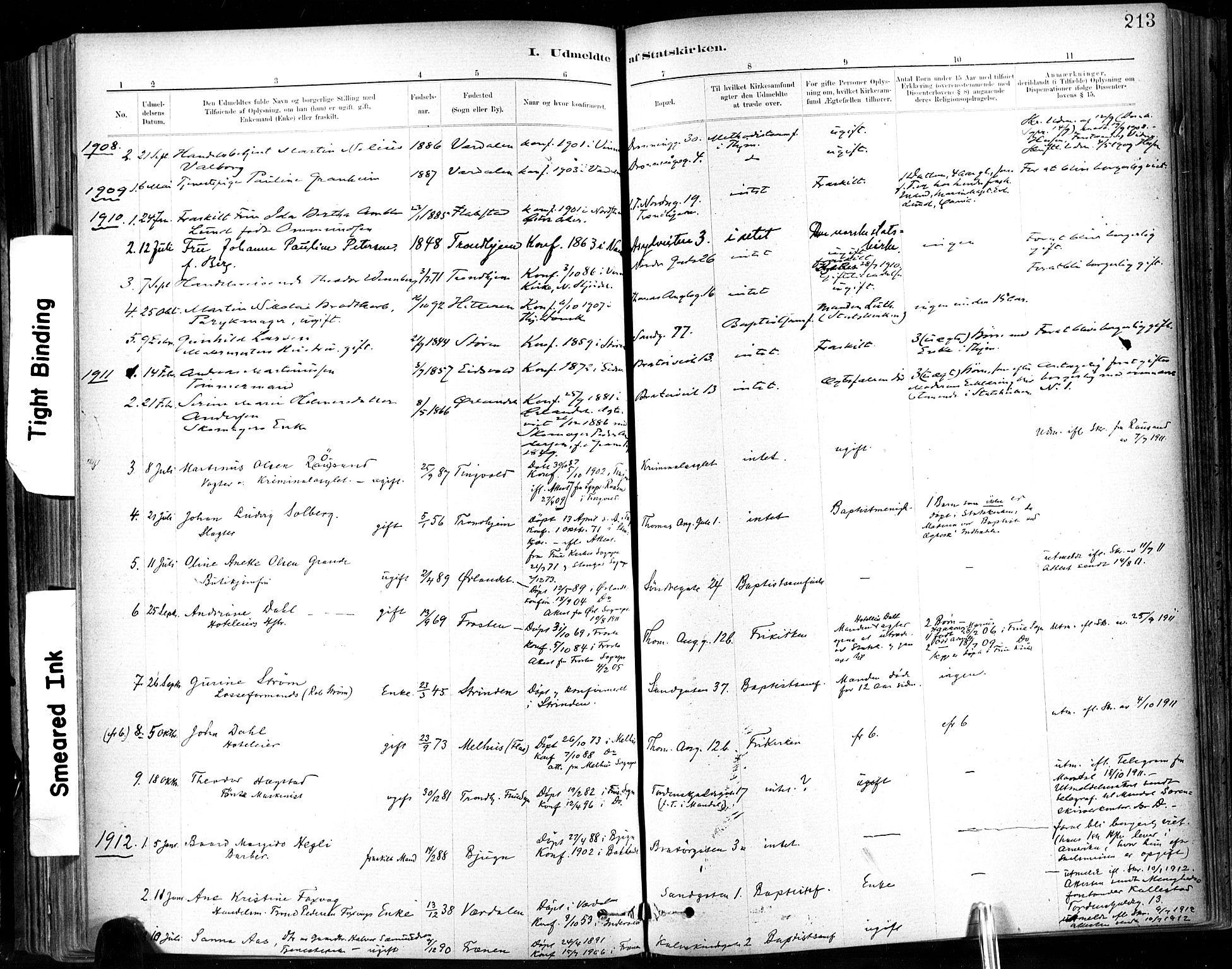 SAT, Ministerialprotokoller, klokkerbøker og fødselsregistre - Sør-Trøndelag, 602/L0120: Ministerialbok nr. 602A18, 1880-1913, s. 213