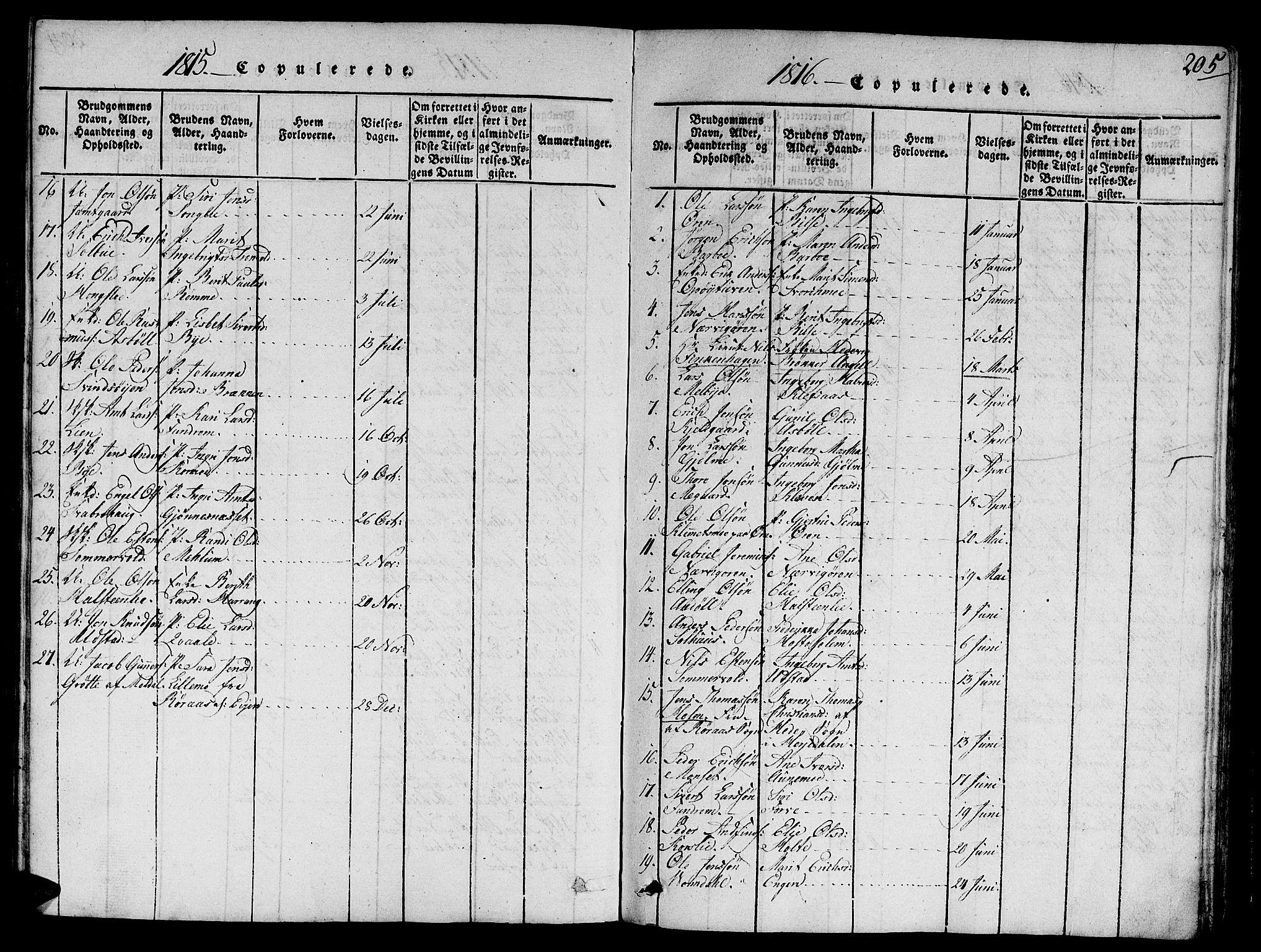 SAT, Ministerialprotokoller, klokkerbøker og fødselsregistre - Sør-Trøndelag, 668/L0803: Ministerialbok nr. 668A03, 1800-1826, s. 205