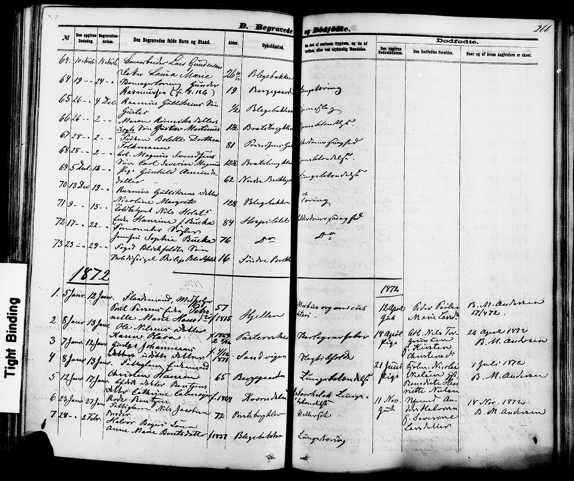 SAKO, Skien kirkebøker, F/Fa/L0008: Ministerialbok nr. 8, 1866-1877, s. 266