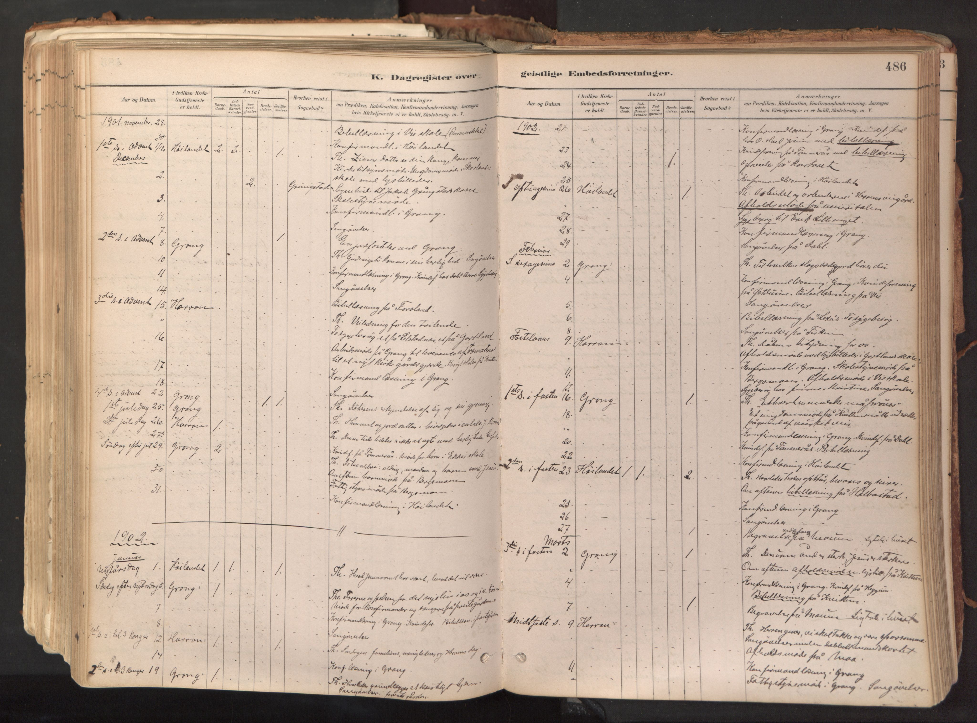 SAT, Ministerialprotokoller, klokkerbøker og fødselsregistre - Nord-Trøndelag, 758/L0519: Ministerialbok nr. 758A04, 1880-1926, s. 486